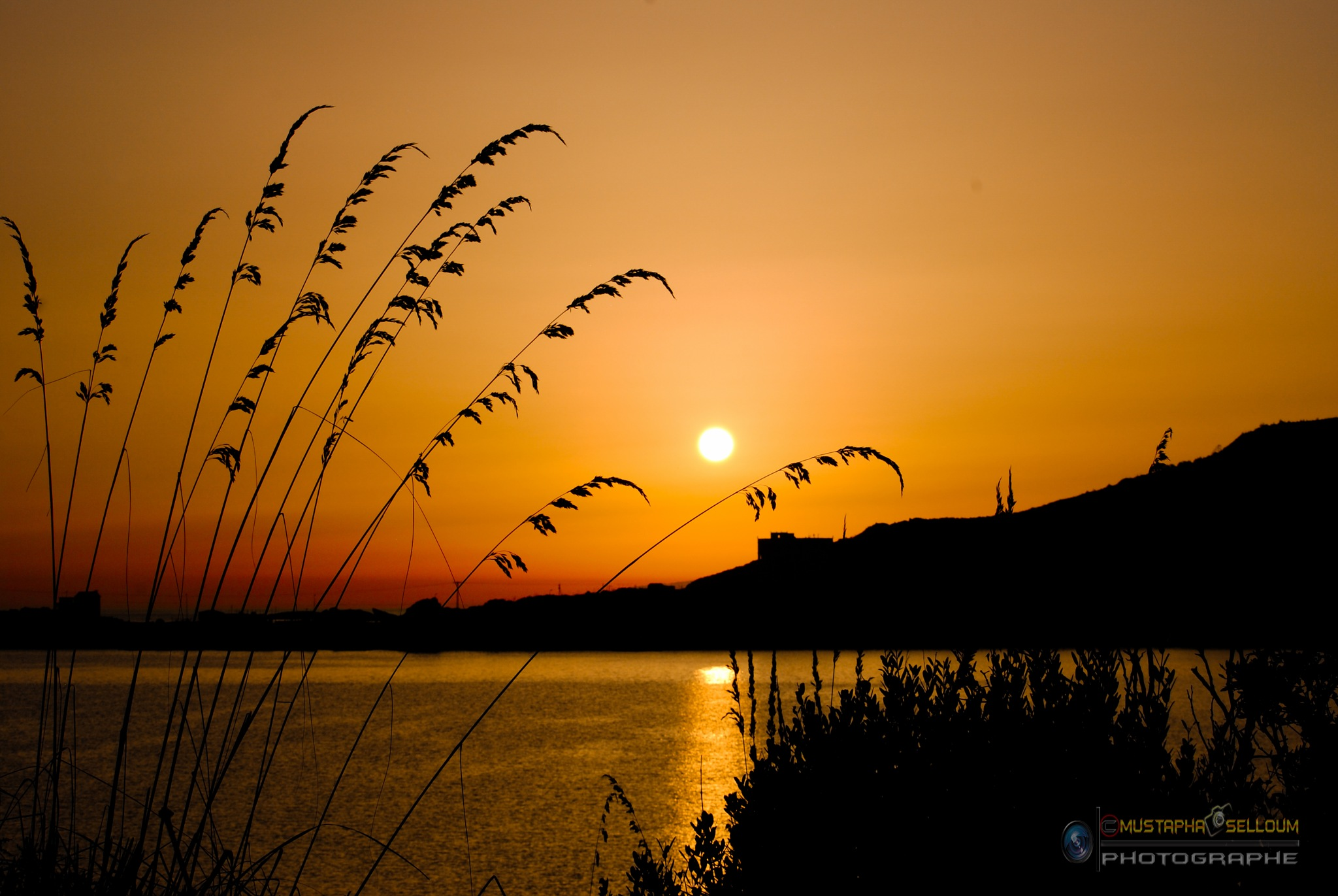 golden Sunset by Mustapha photographe
