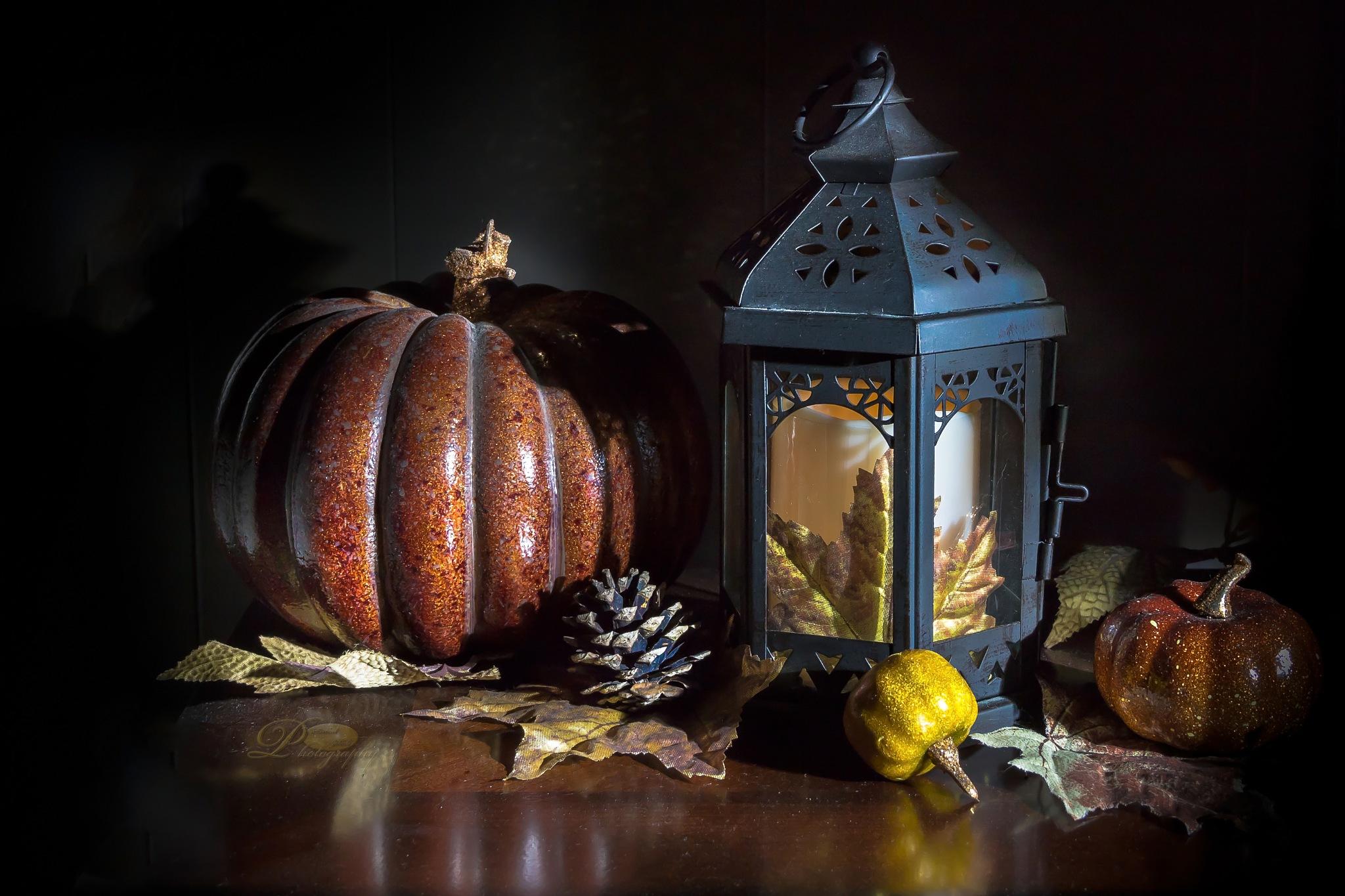 Fall Decor by Michael Johnk