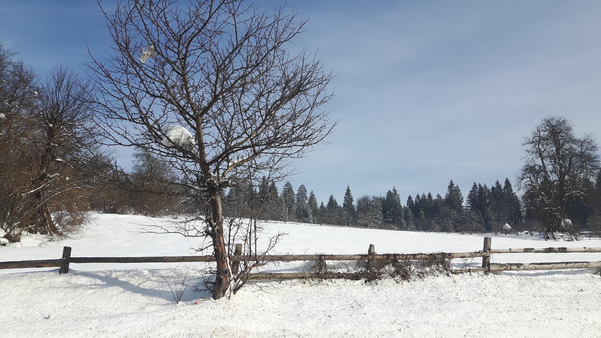 Winter in Bosnia by Mevludin_Hasanovic