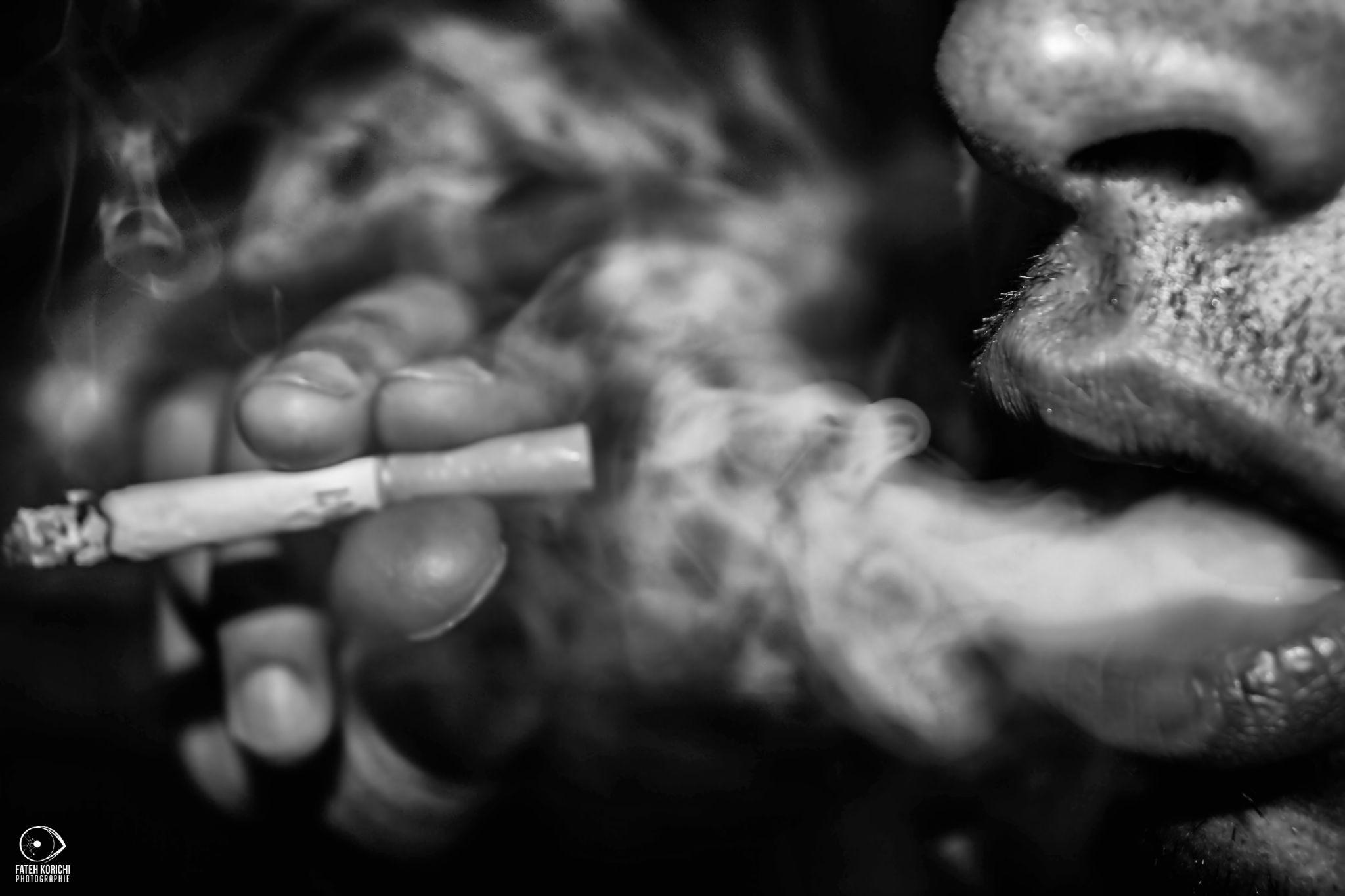 smokin by Fateh Korichi