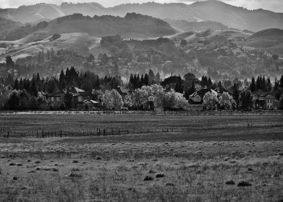 Hills above Petaluma by Steven M