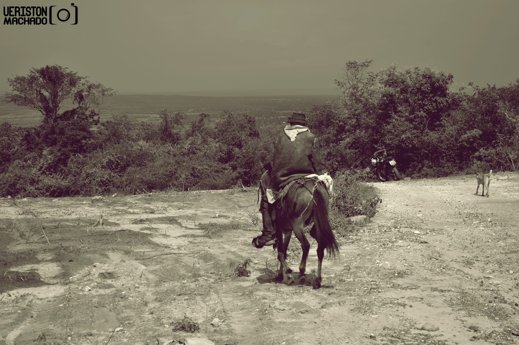 O Vaqueiro by Ueriston Machado