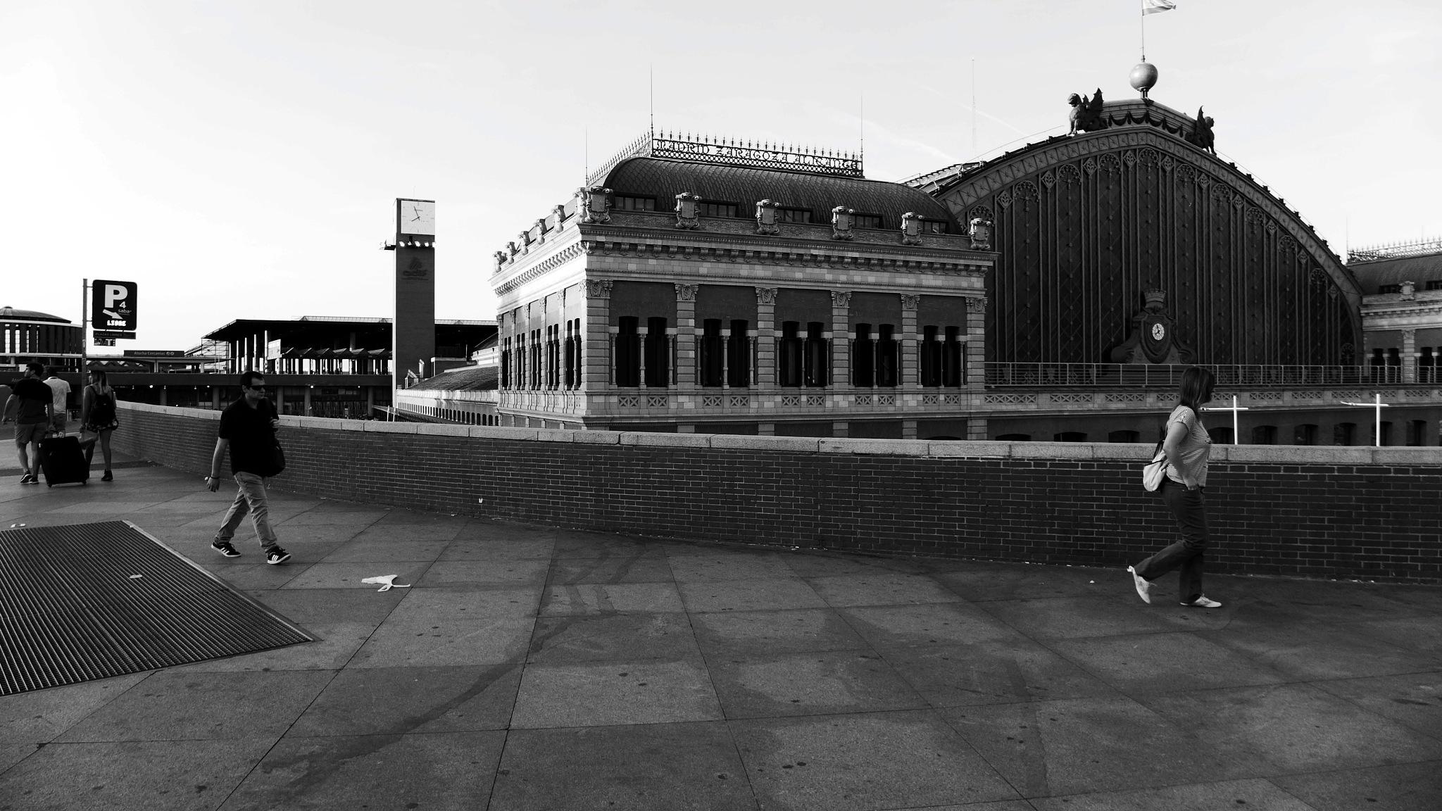 Estación de Atocha by philray