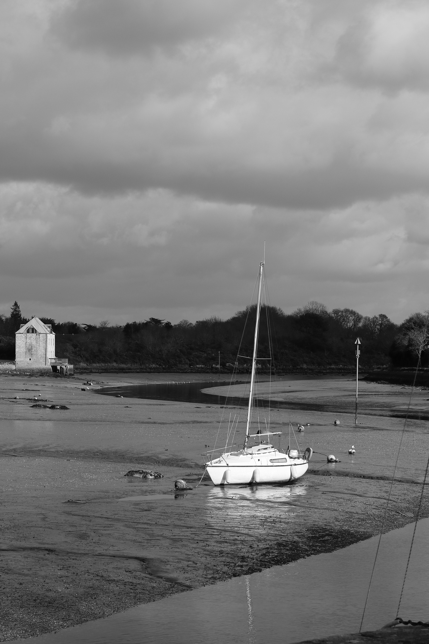 Photo in Black and White #river