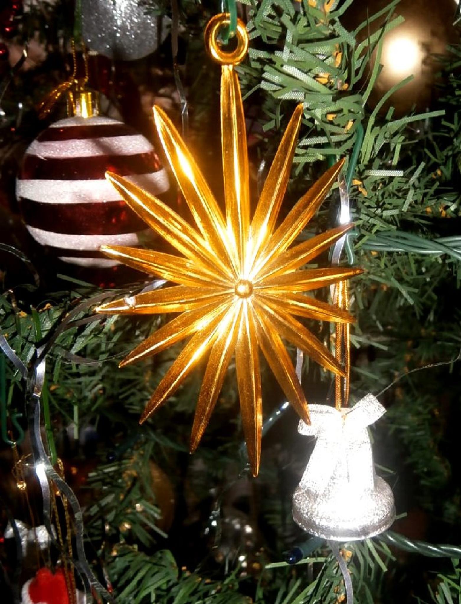 Merry Christmas! by Josip Šibarić