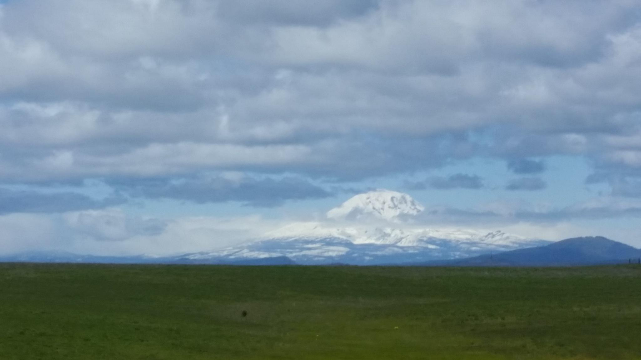 Mount Adams Washington State view from Goldendale Washington by B56