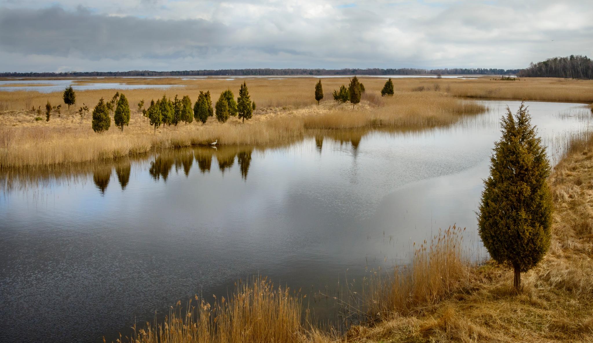 Lake Kaņieris, Latvia  by nilsons1974
