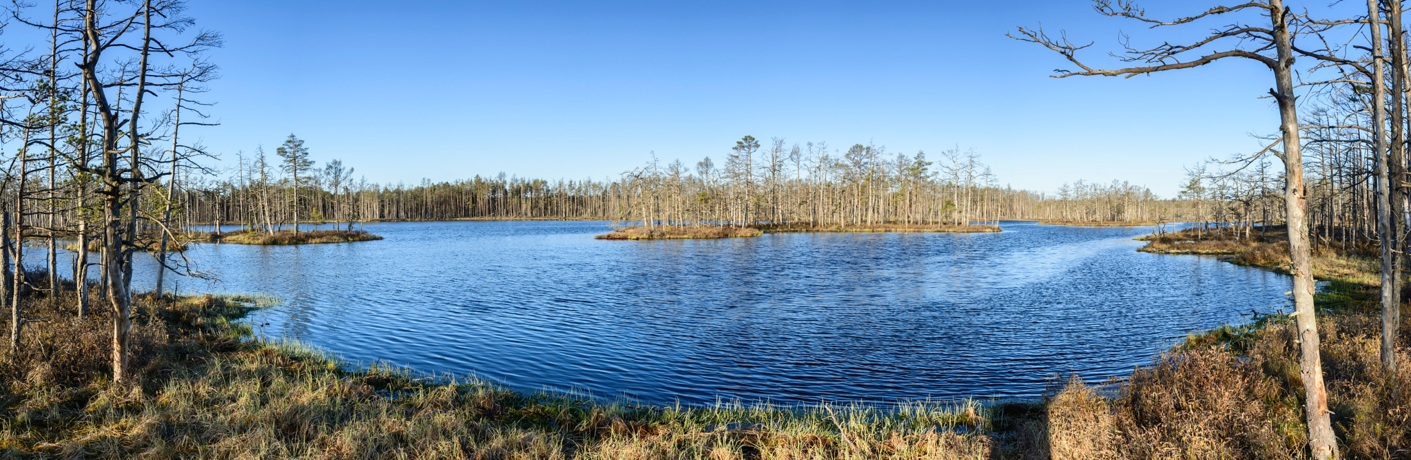 Lake in the woods 4 by nilsons1974