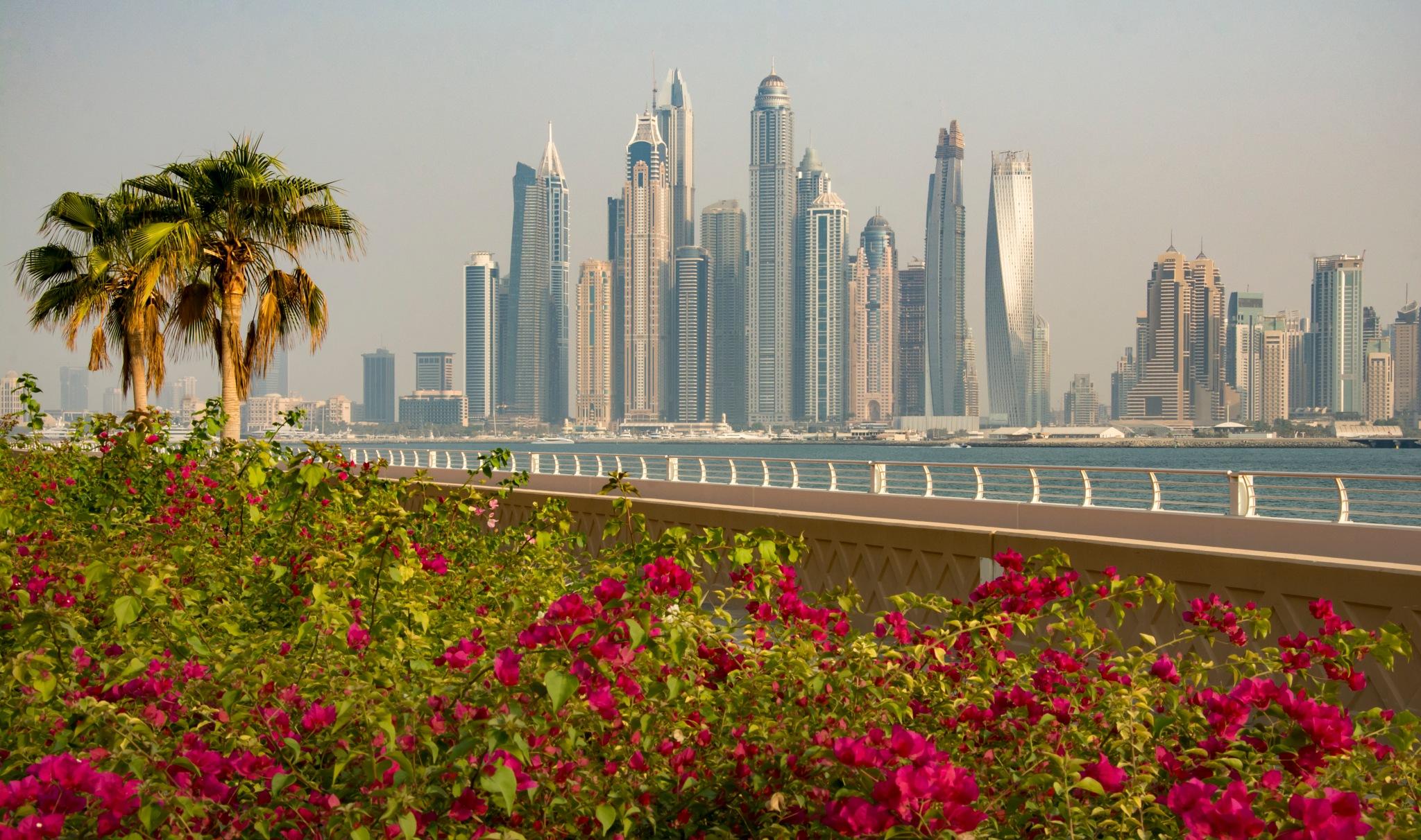 Dubai 2 by nilsons1974