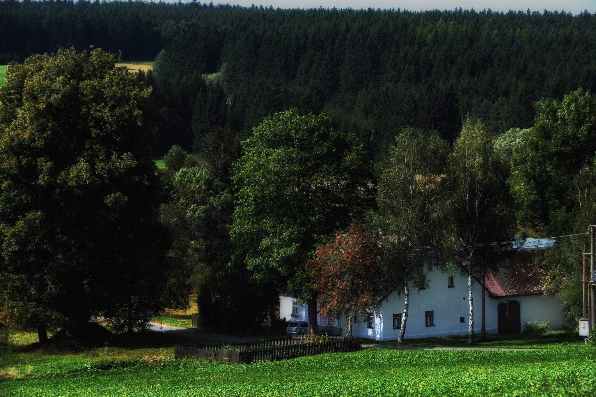 Czech Moravian Highlands  by Walter Novak