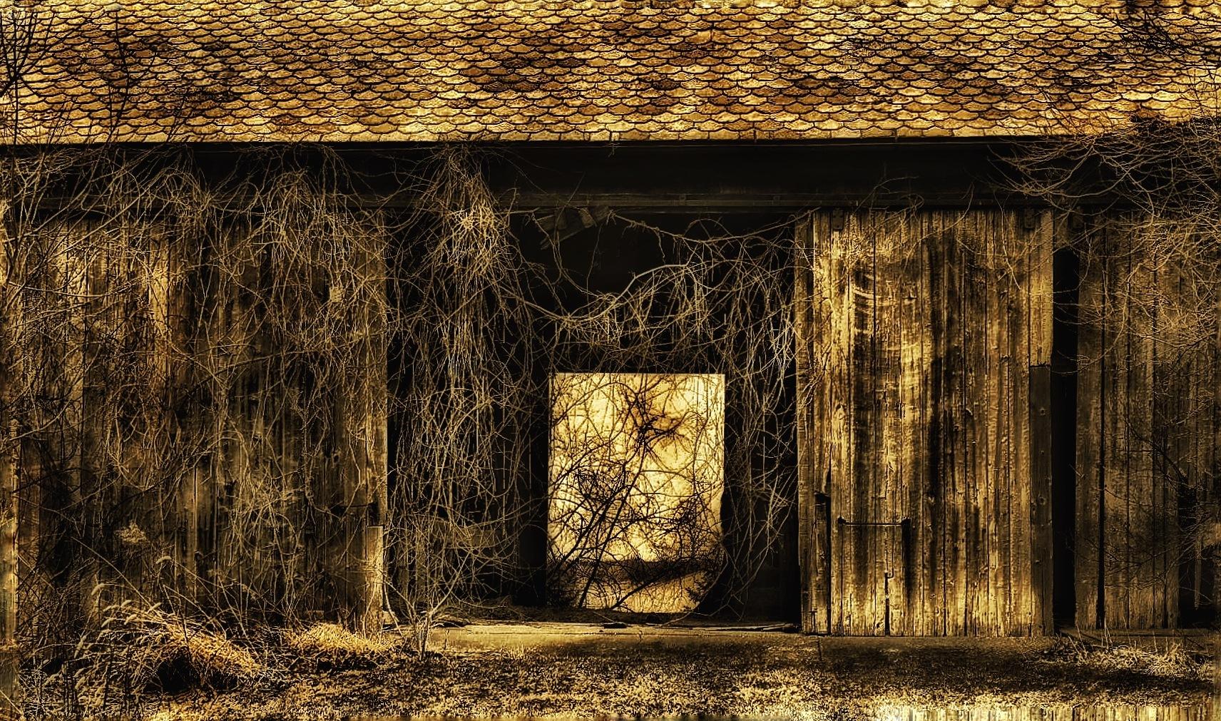 Abandoned Ohio Barn by Walter Novak