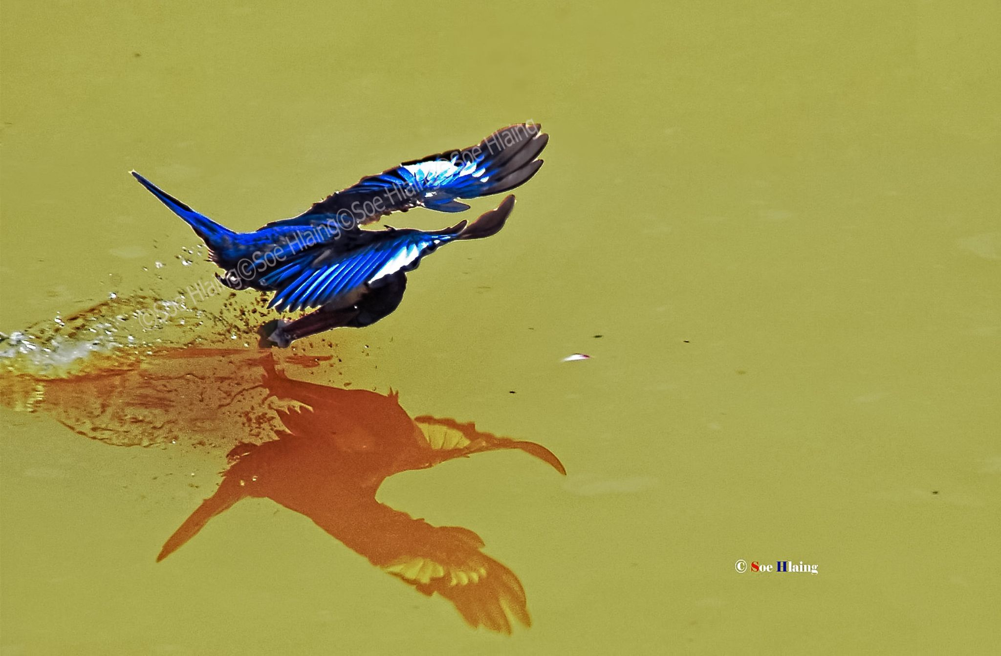 Skipping over Water. by SoeHlaing
