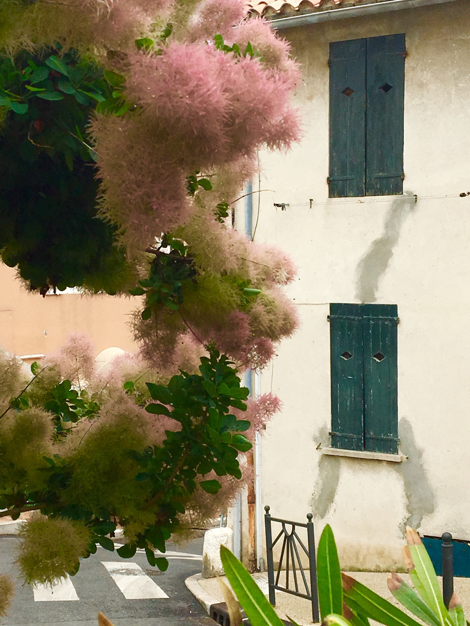 Colours of Cassis by ceciliacarcamo