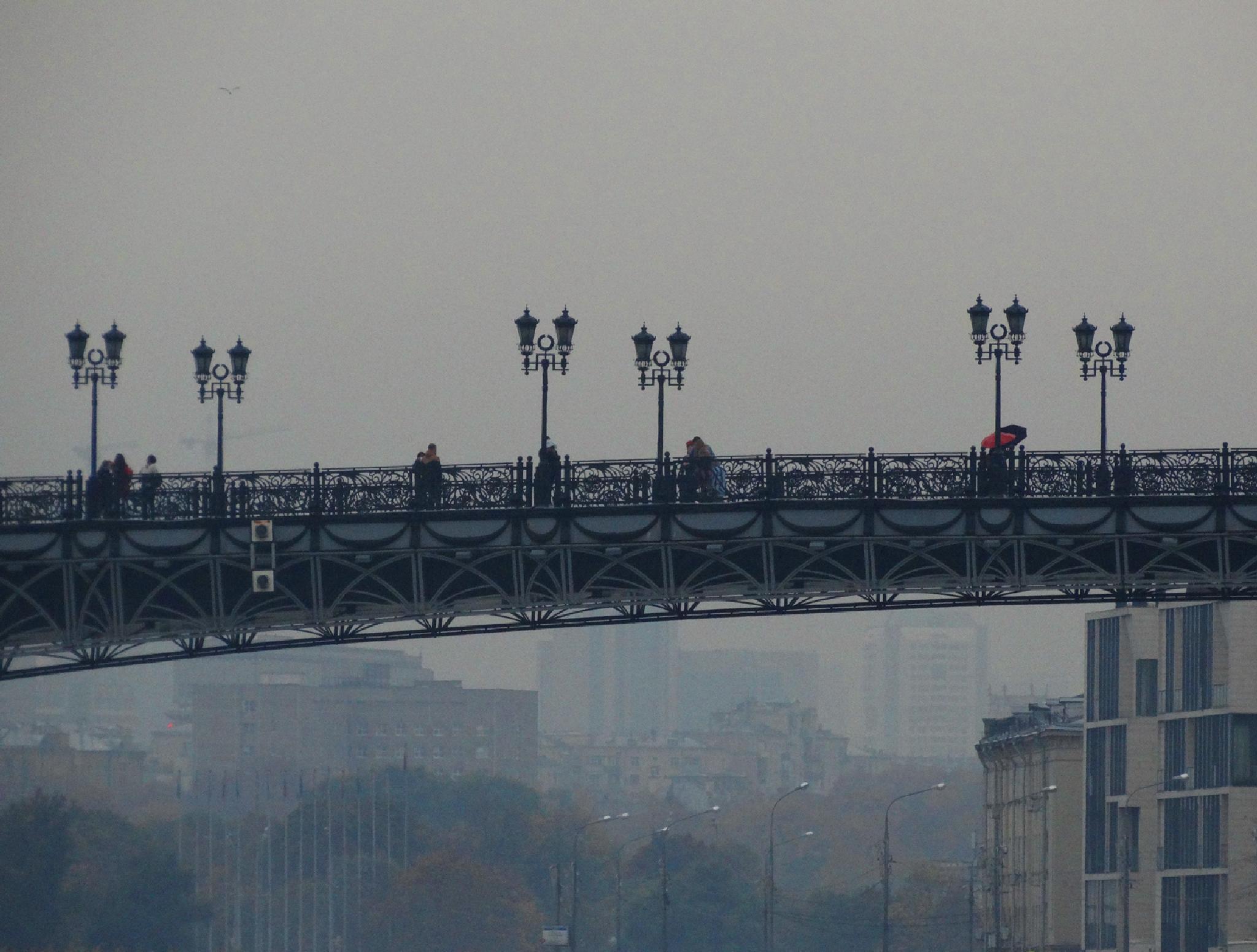 В дождливом городе. Мост by tarutinaolga2012