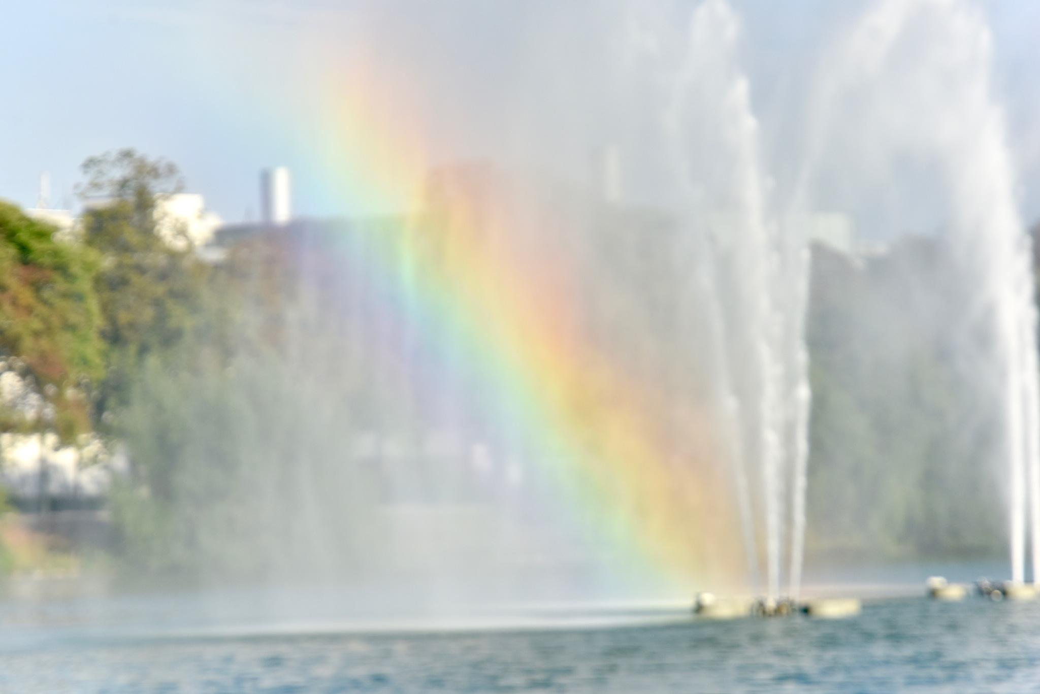 Rainbow 8! by Memed Bayatli