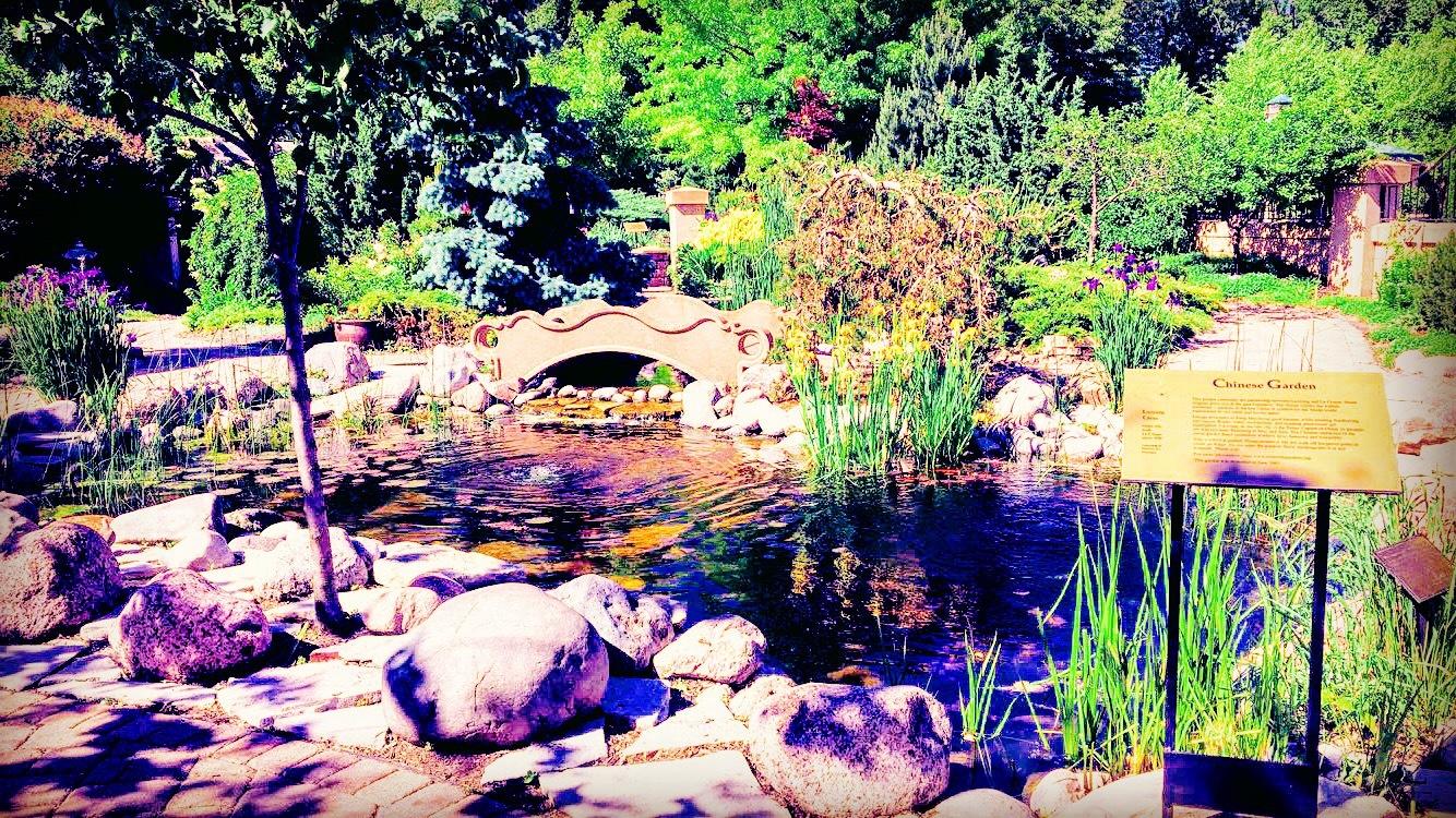 Chinese Garden by Mariah Sample