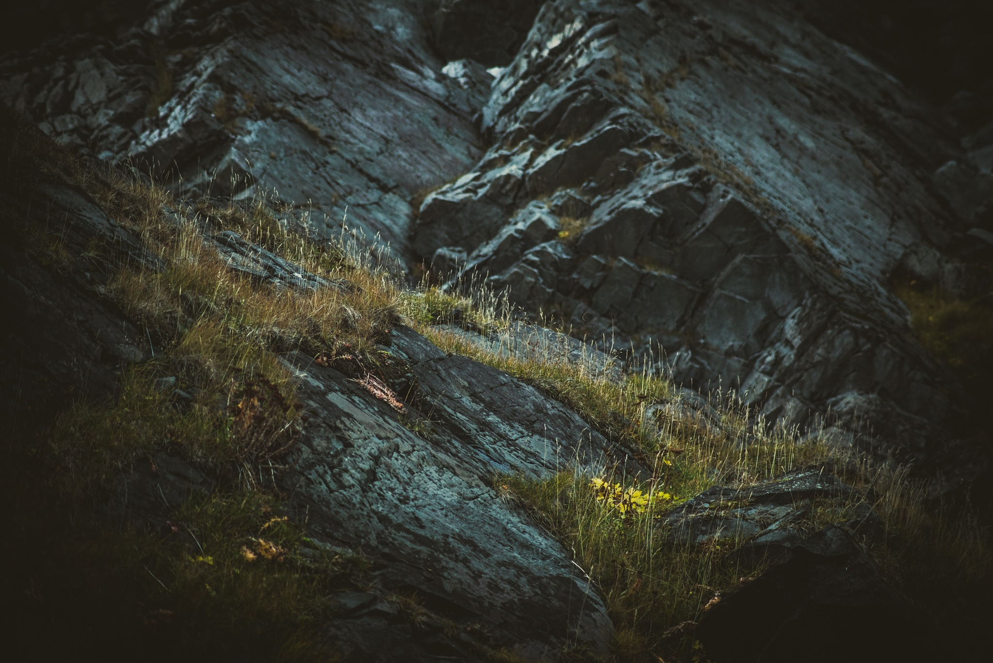 Light's Play by Juuso Voutilainen