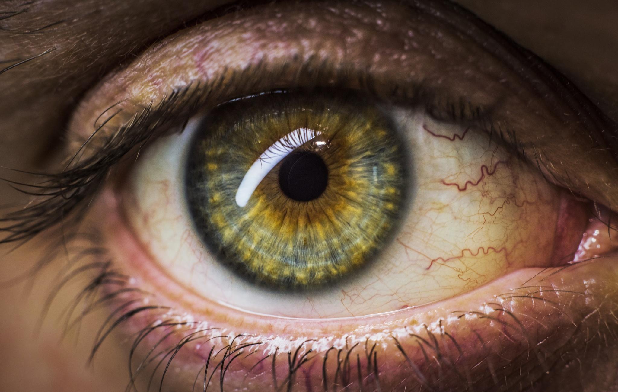 Eye5 by Khaled Bakkora