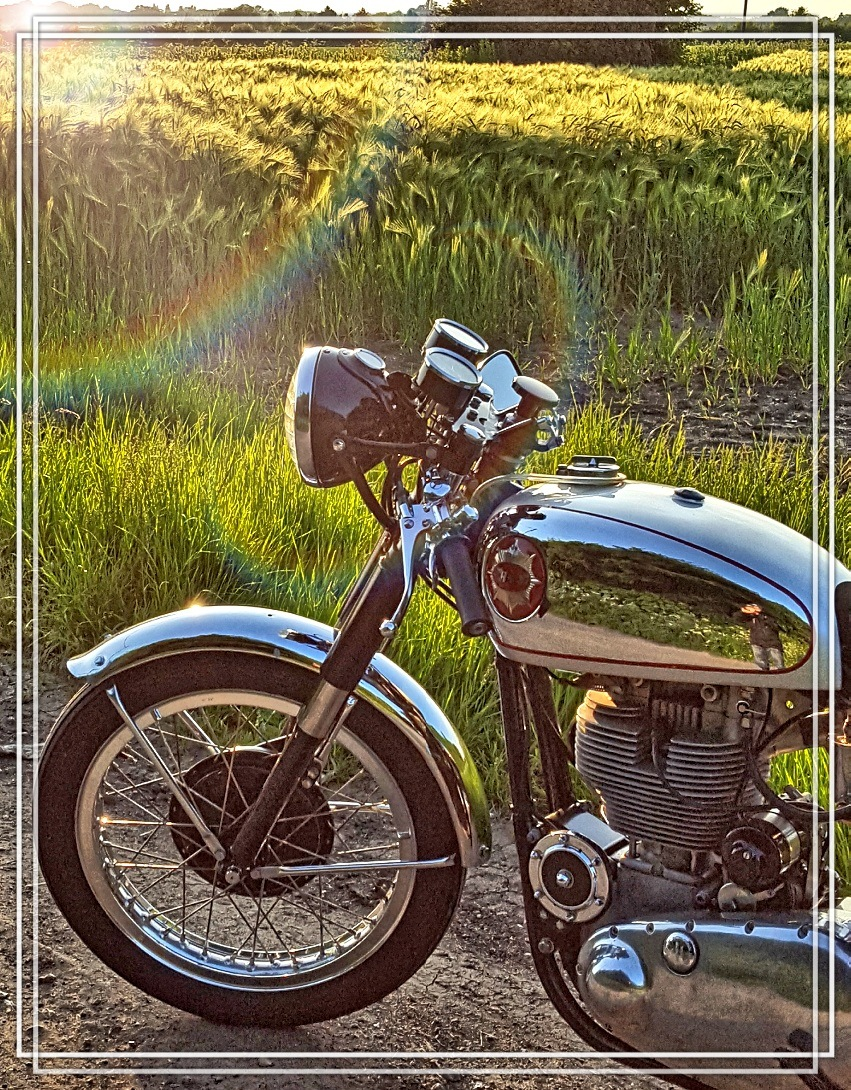 BSA Gold Star in the sun by Barry Buttle