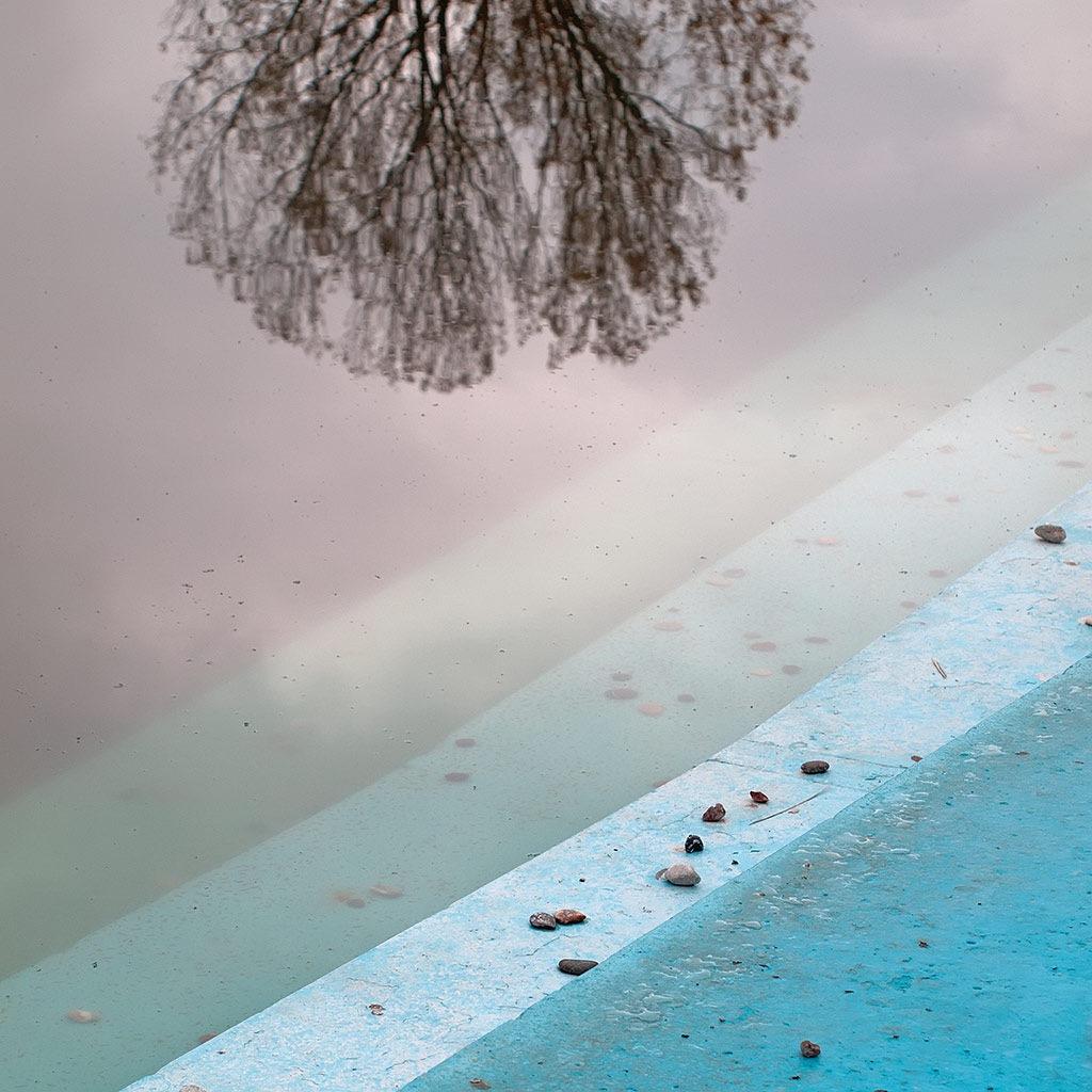 pool tree by Diwan