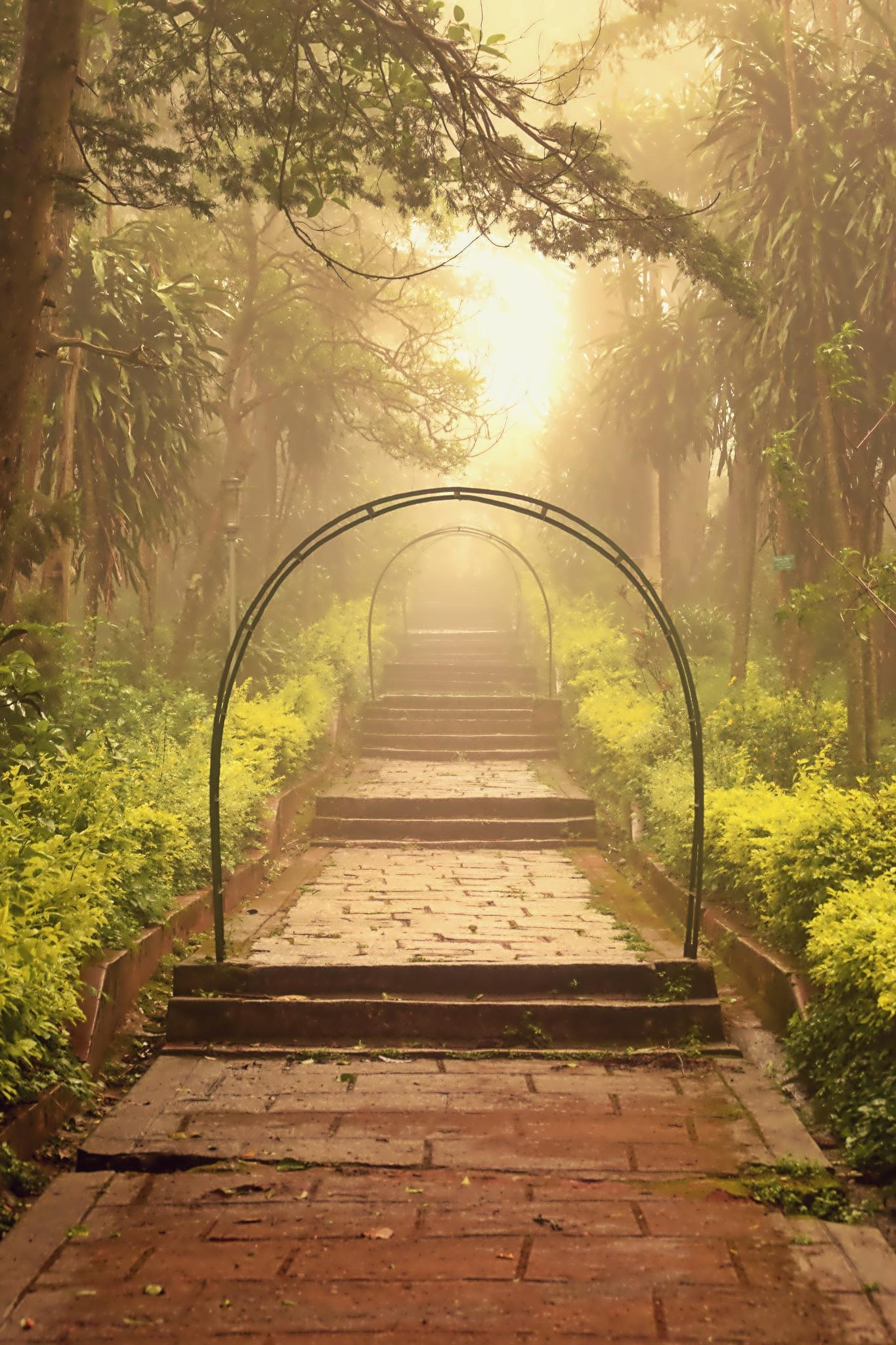 nature by Varun Sharma