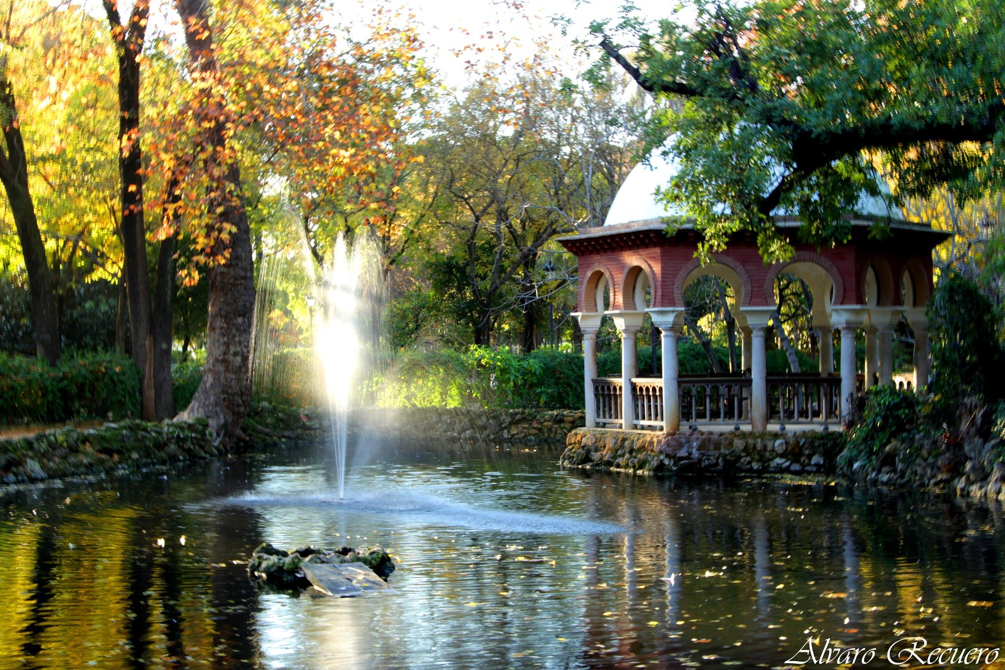 Autumn park by Alvaro Recuero
