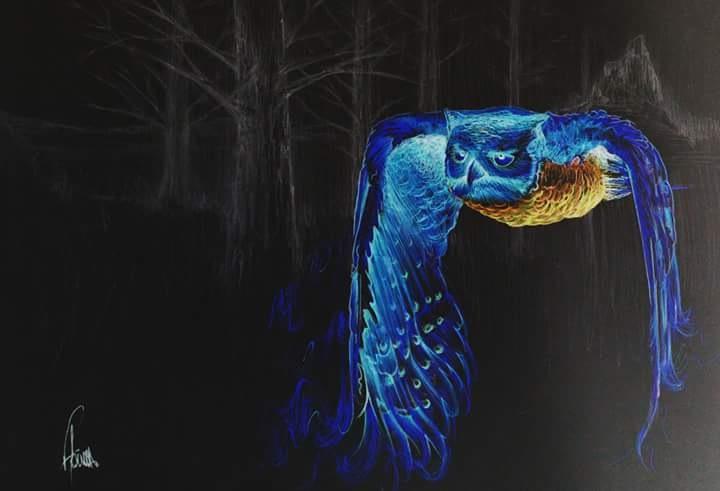 Owl  by Flavius Garcia