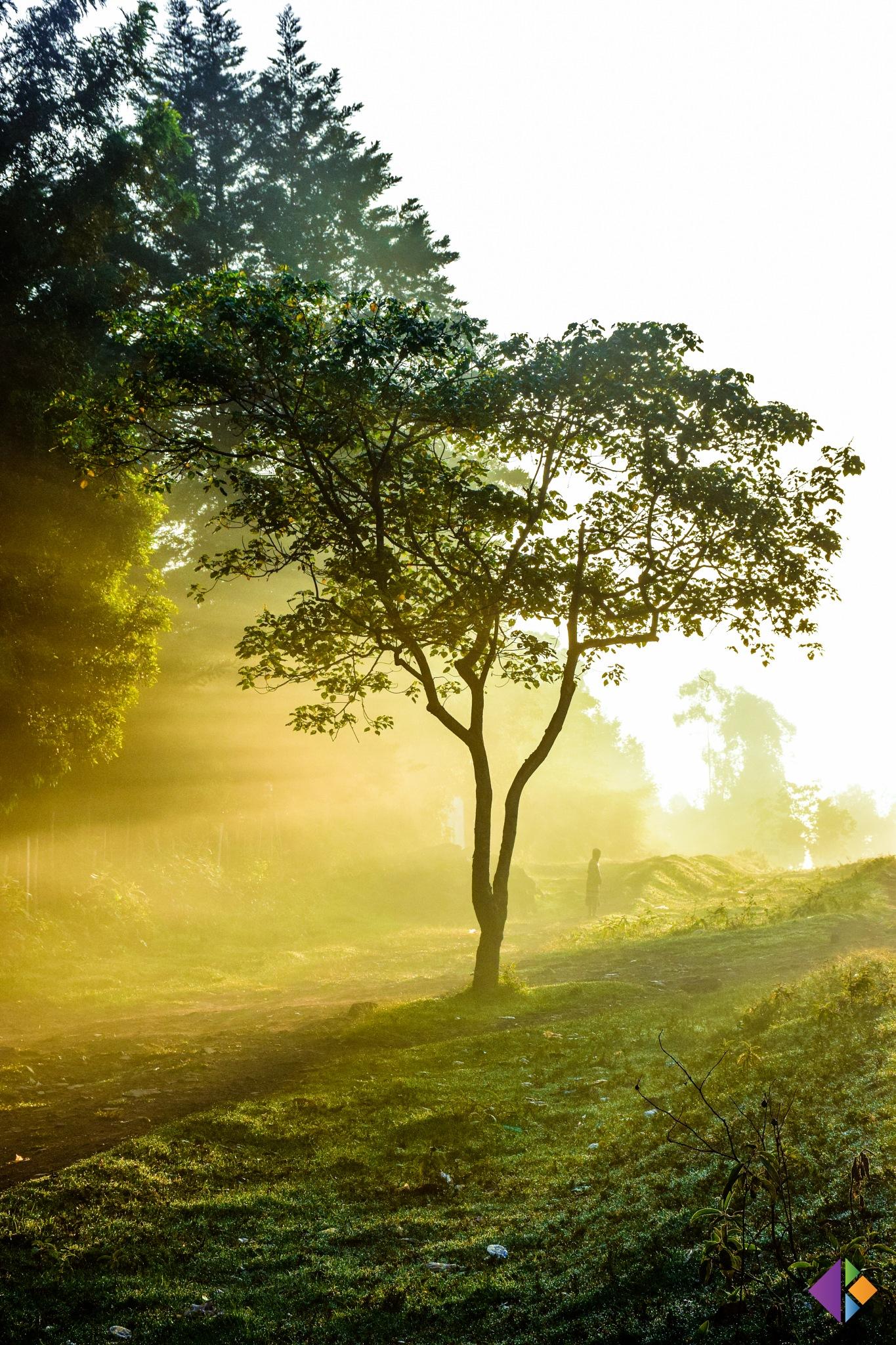Sunrise in the East by Kioko Muindi