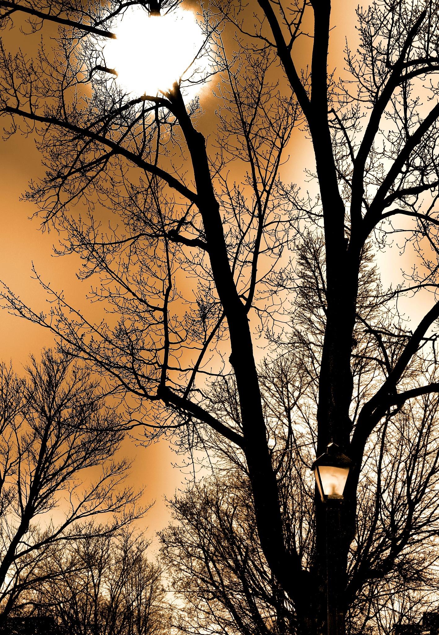 Dirty Sunset by Chris Carroll