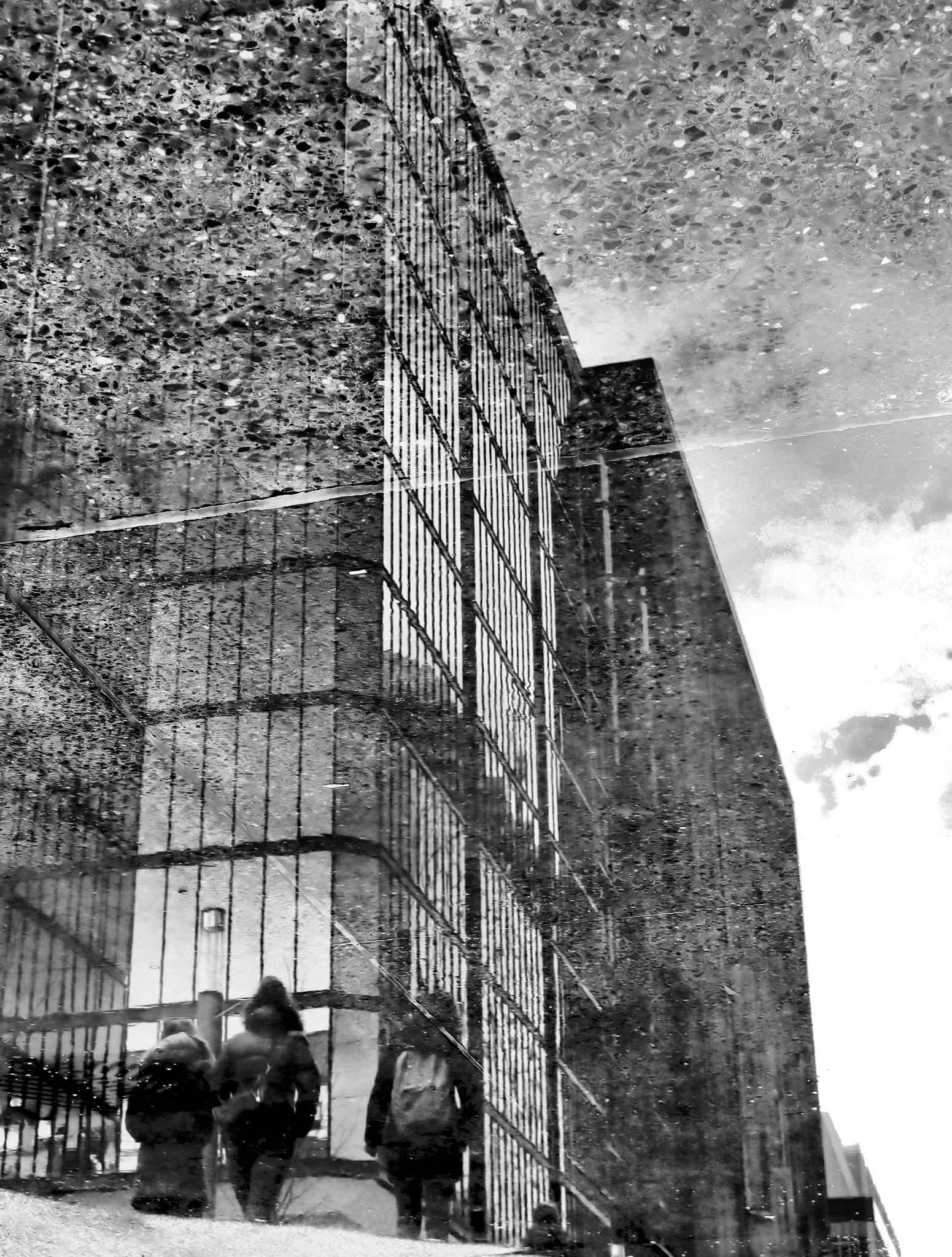 Reflected World Project by Chris Carroll