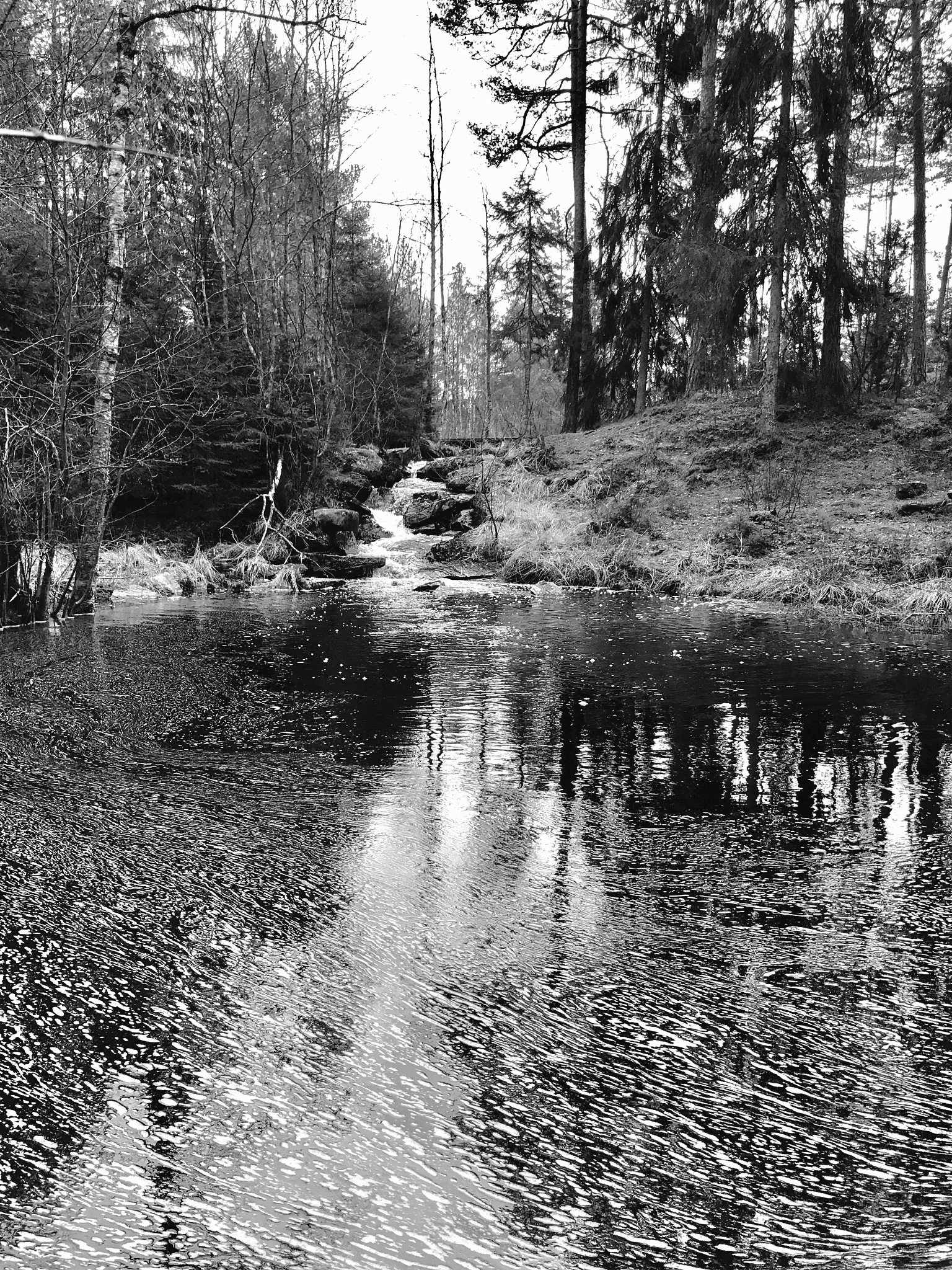 Water  by Christin Johansen