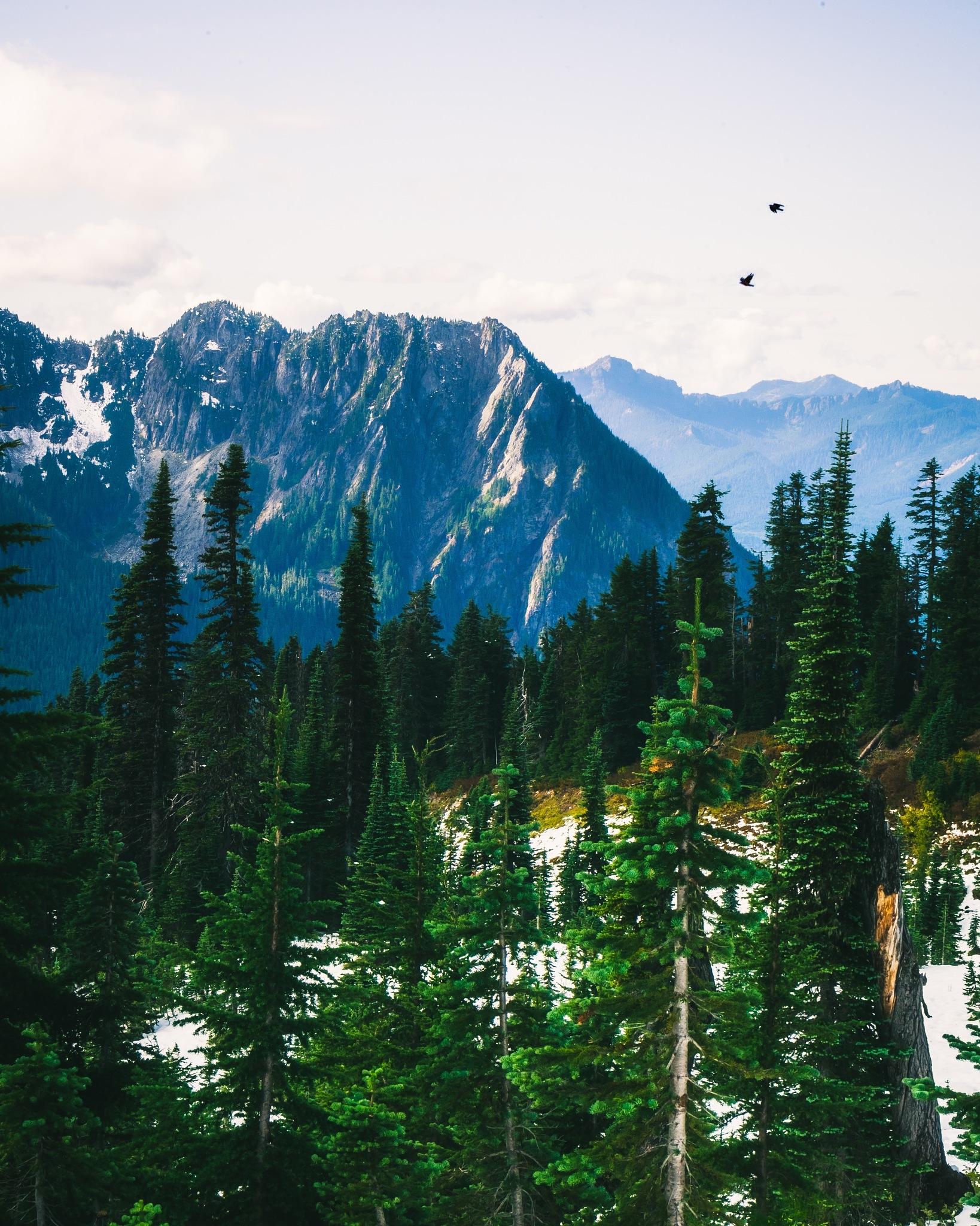 Keep Climbing by Yuzar Farid