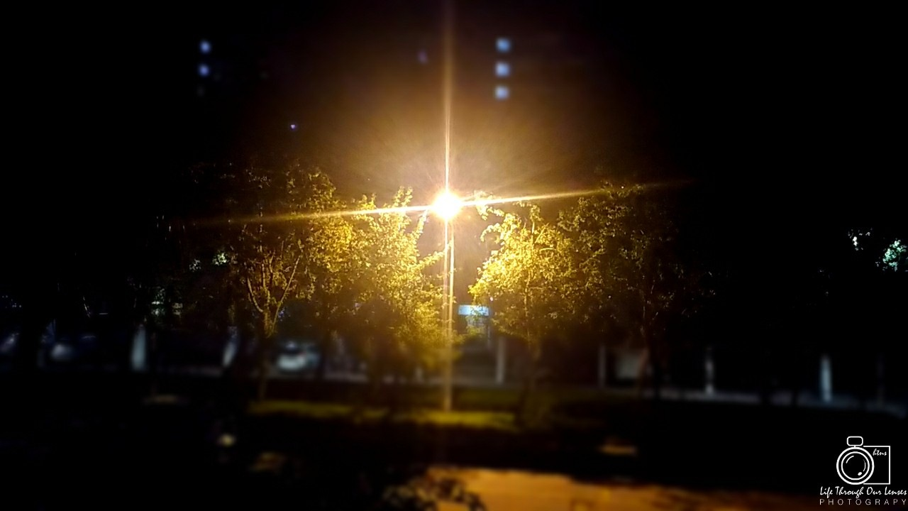 Street Light 2 by Life Through Our Lenses