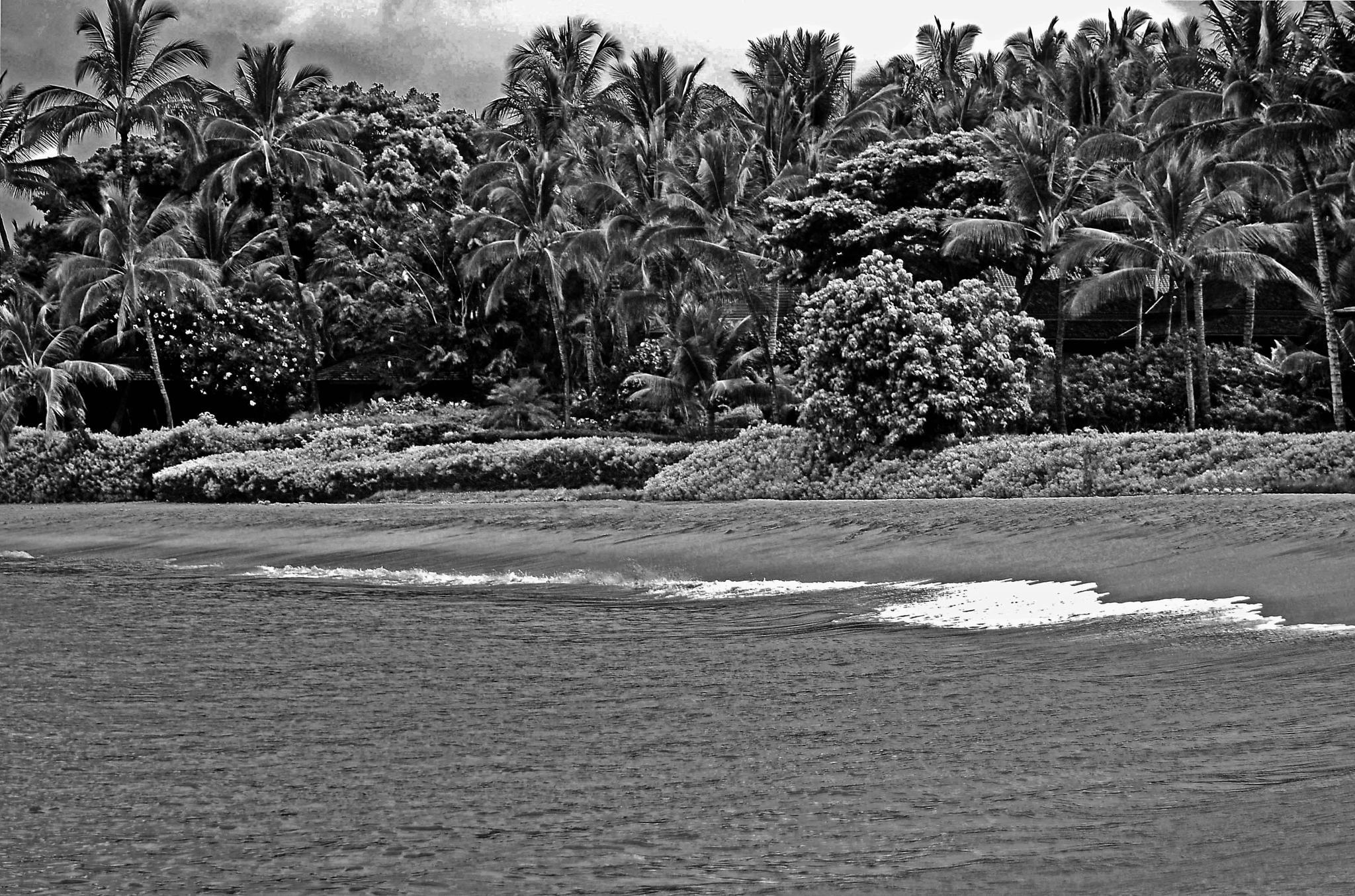 Palau'ea Beach, Makena, Maui by Bruce Wheeler