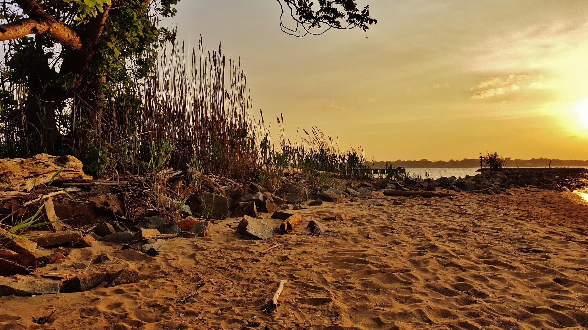 Fort Smallwood Evening Beach Scene by Matthew Beziat