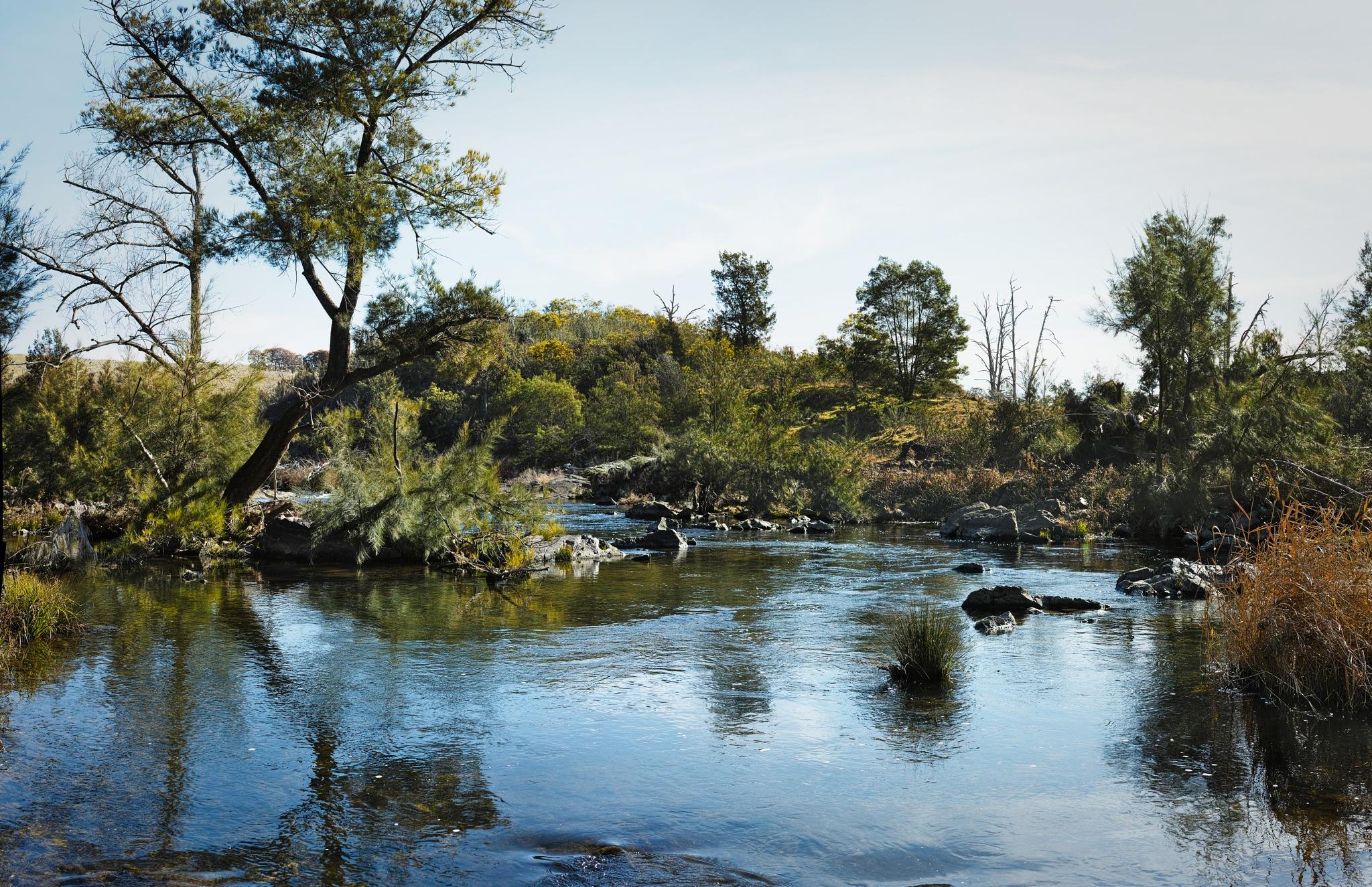 Molonglo River by TonyG