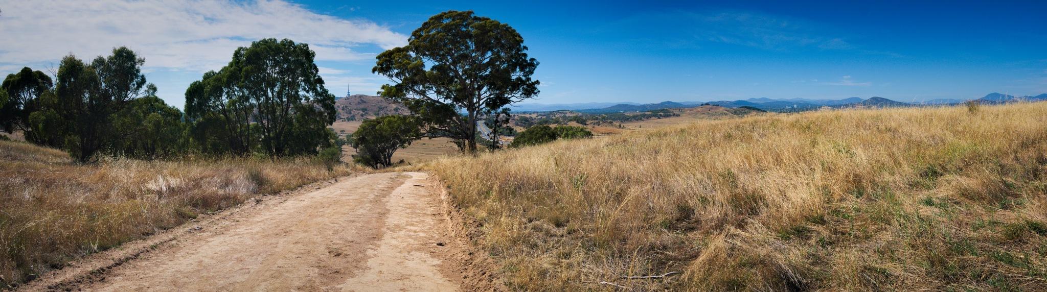 Pinnacle path by TonyG