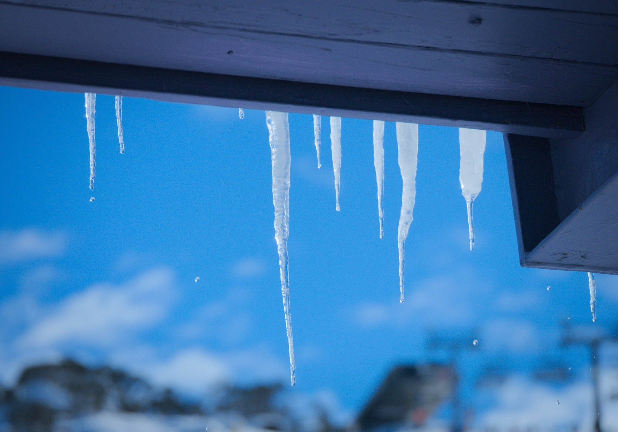Icicles, mid-melt by TonyG