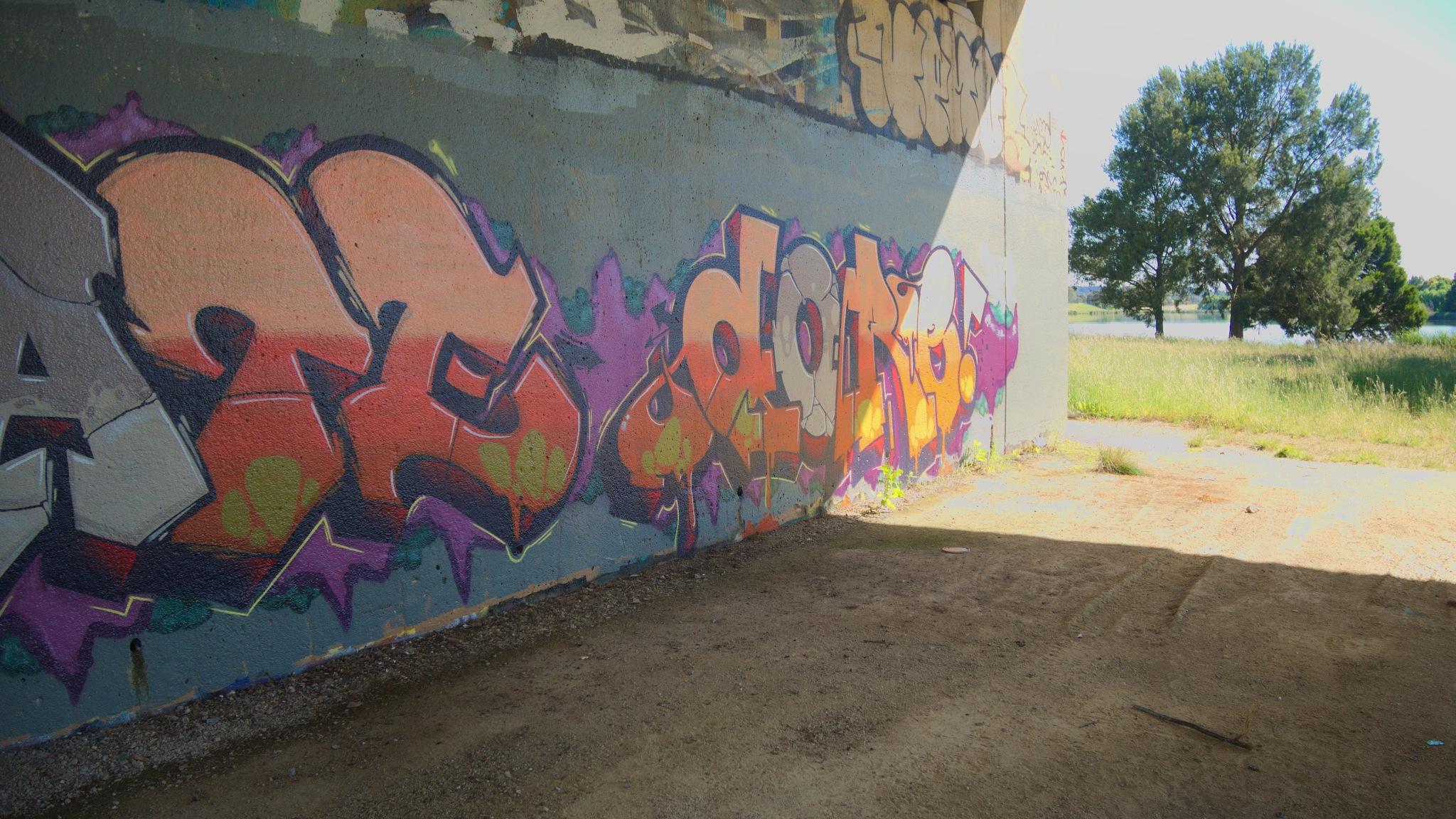Bridge graffiti by TonyG