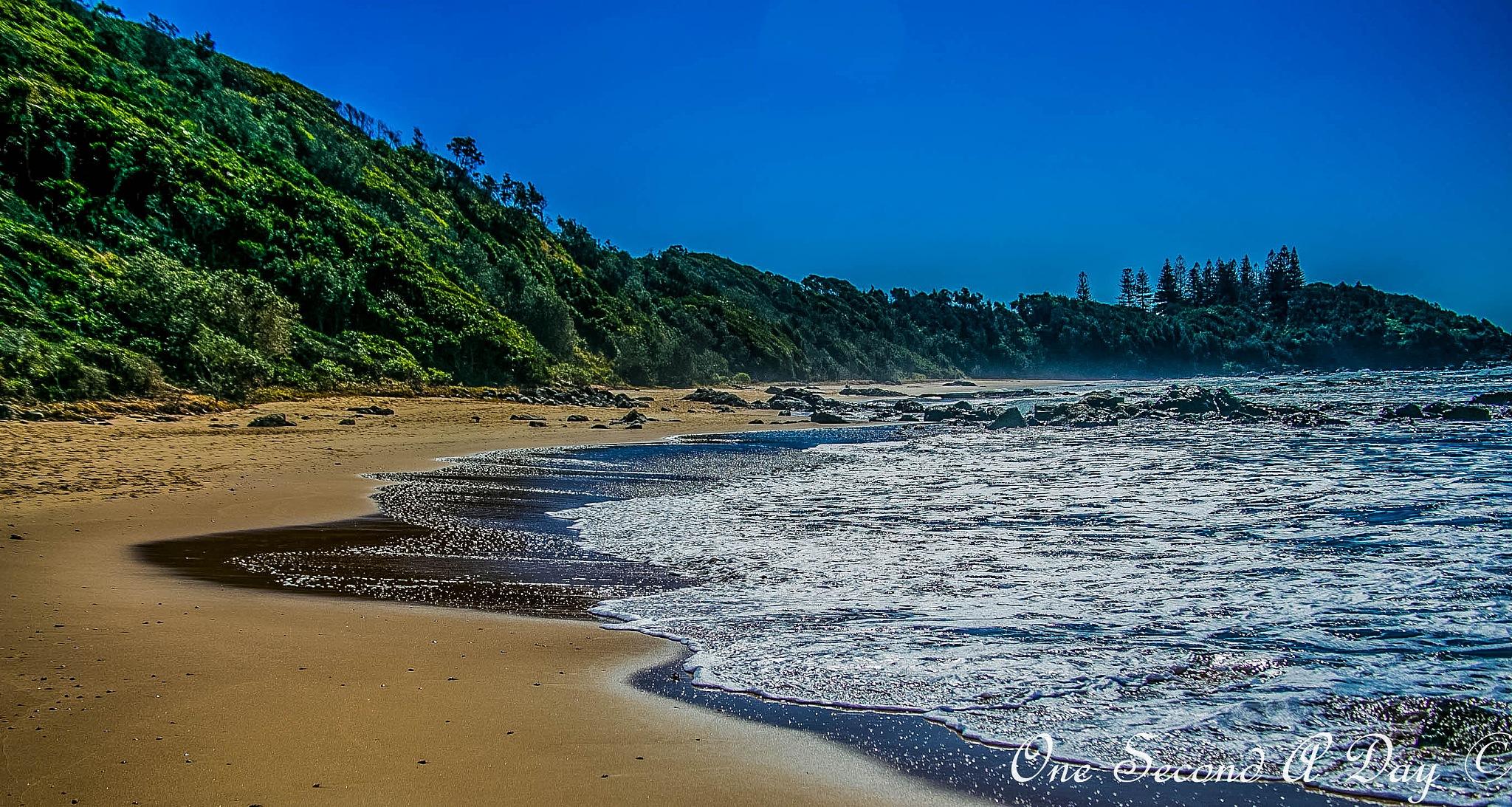 Shelly Beach Port Macquarie  by Daz Laughton