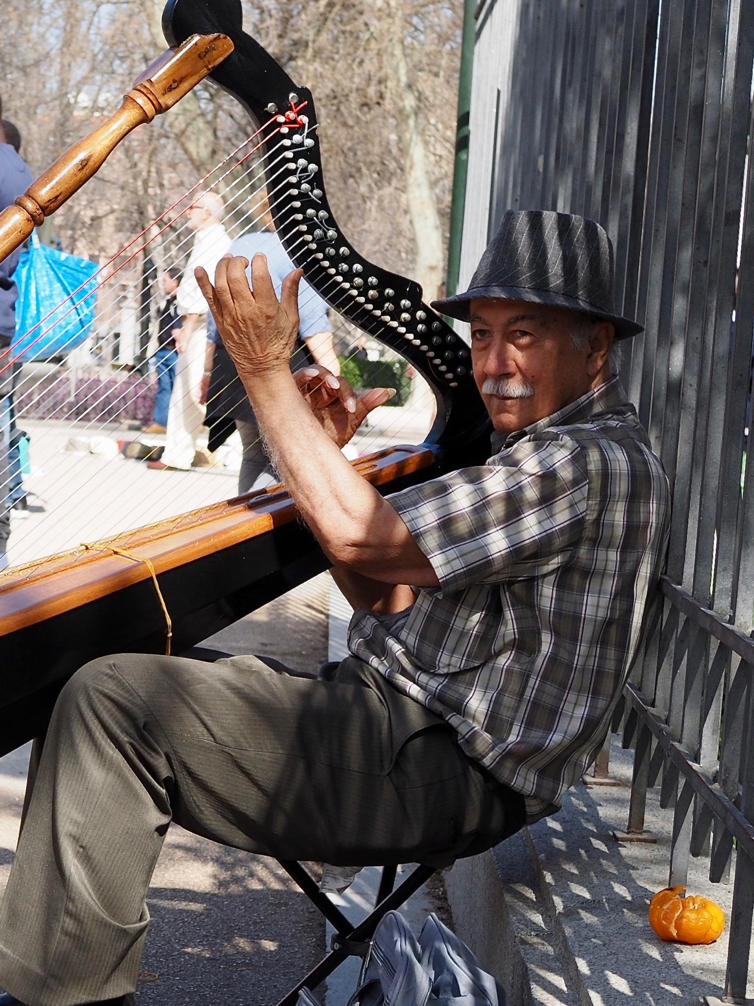 musician by Dietrik Vr