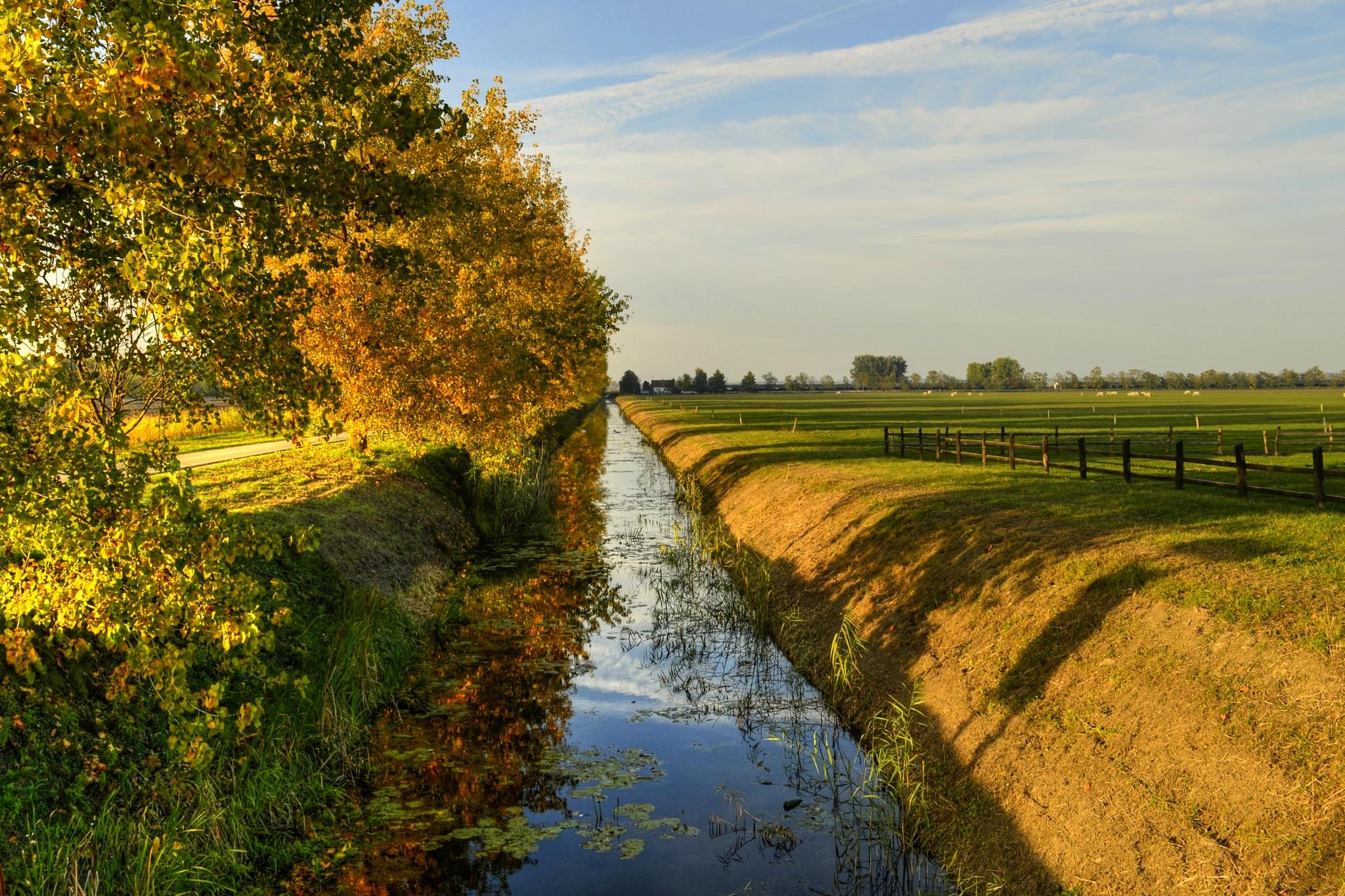 Baranja beautiful autumn by Nenad Milic