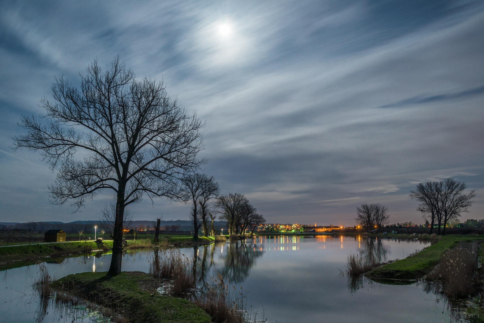 moonlight by Nenad Milic
