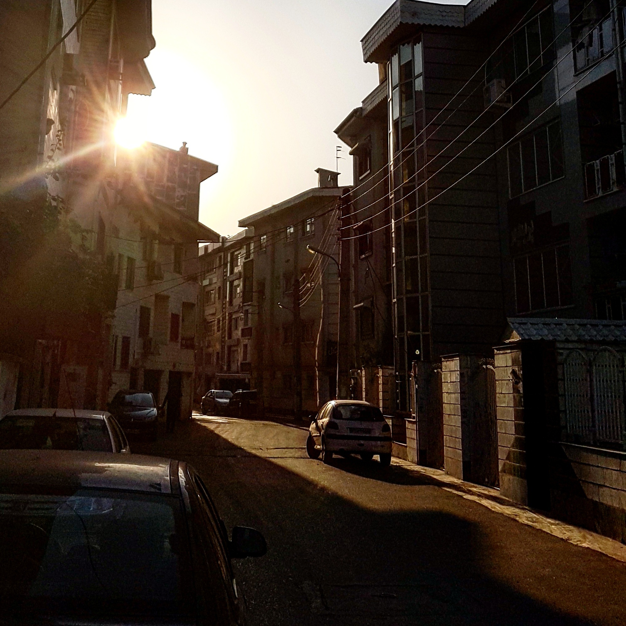 Summer by taherikambiz