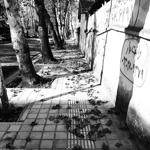 My city Alley in fall by taherikambiz