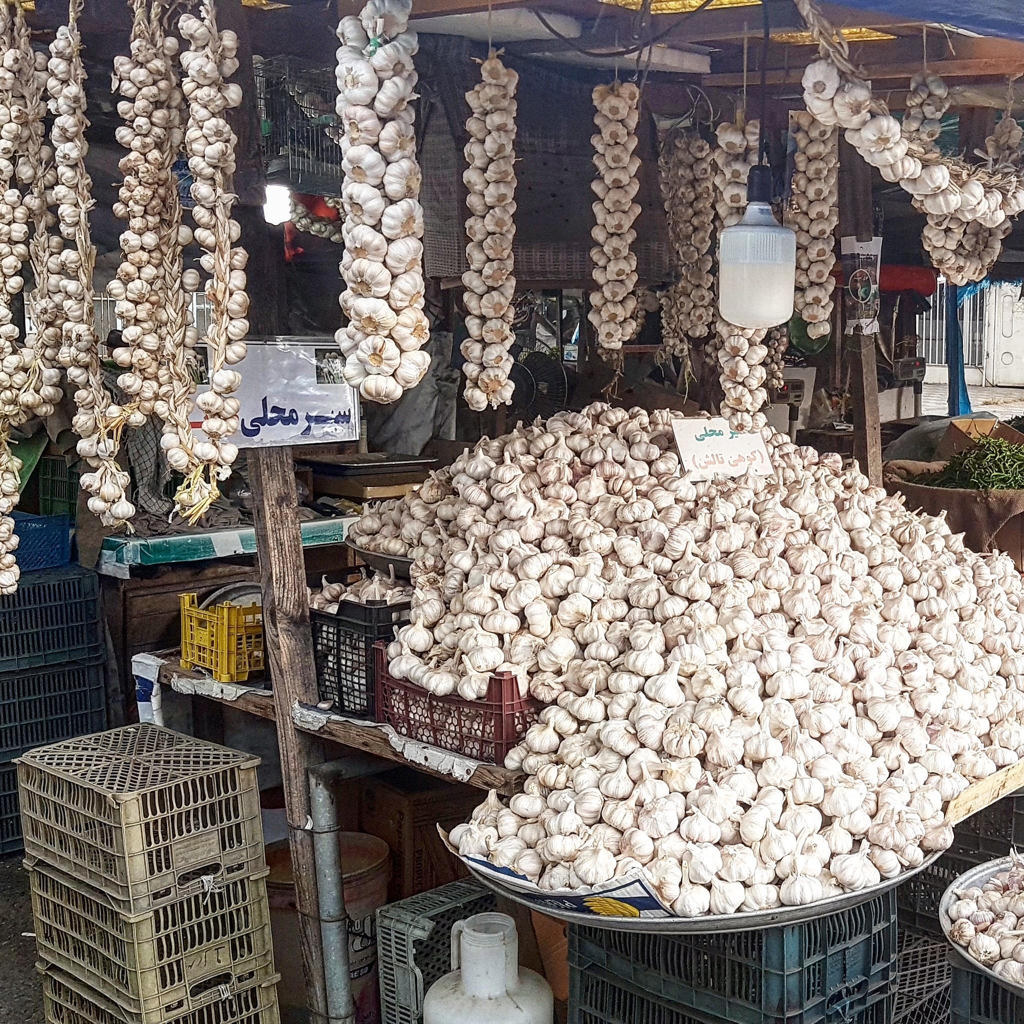 Garlic shopping by taherikambiz