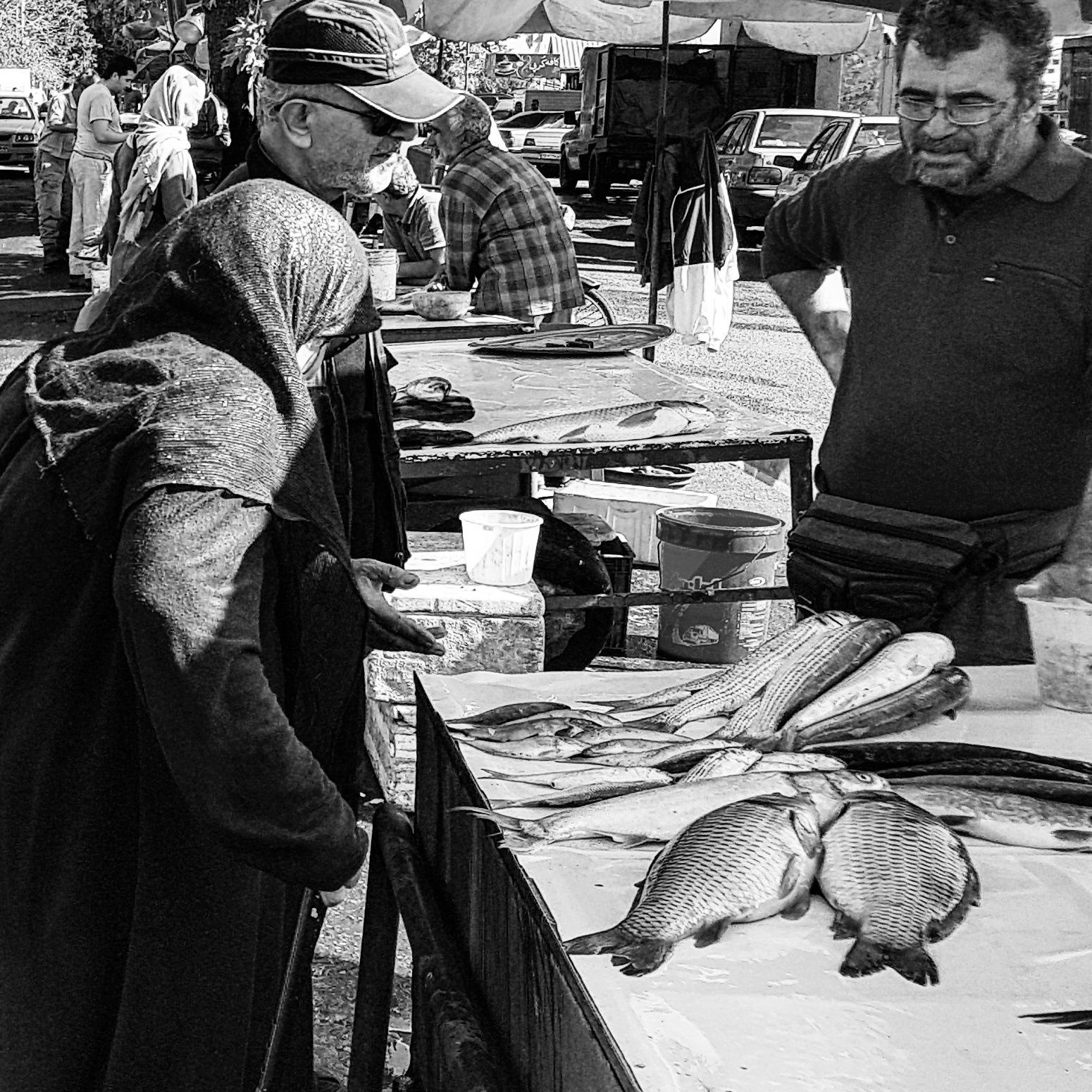 Fish market by taherikambiz