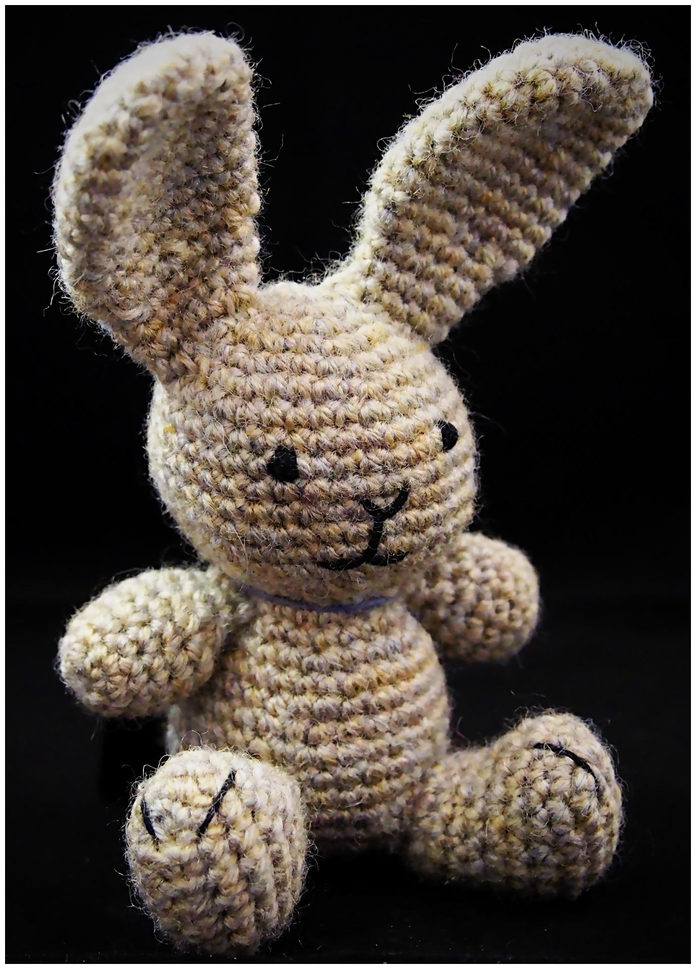 Bunny by MorpheusDreaming