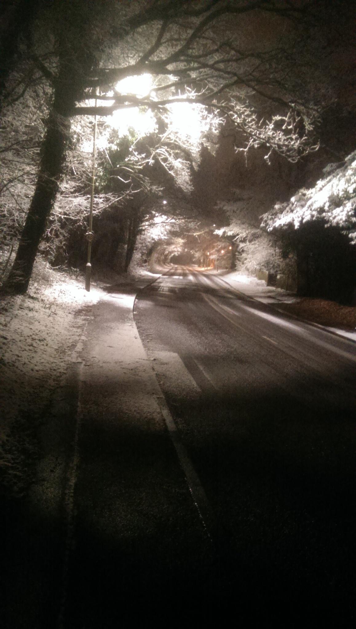 snow  by Amanda Kentish Waller