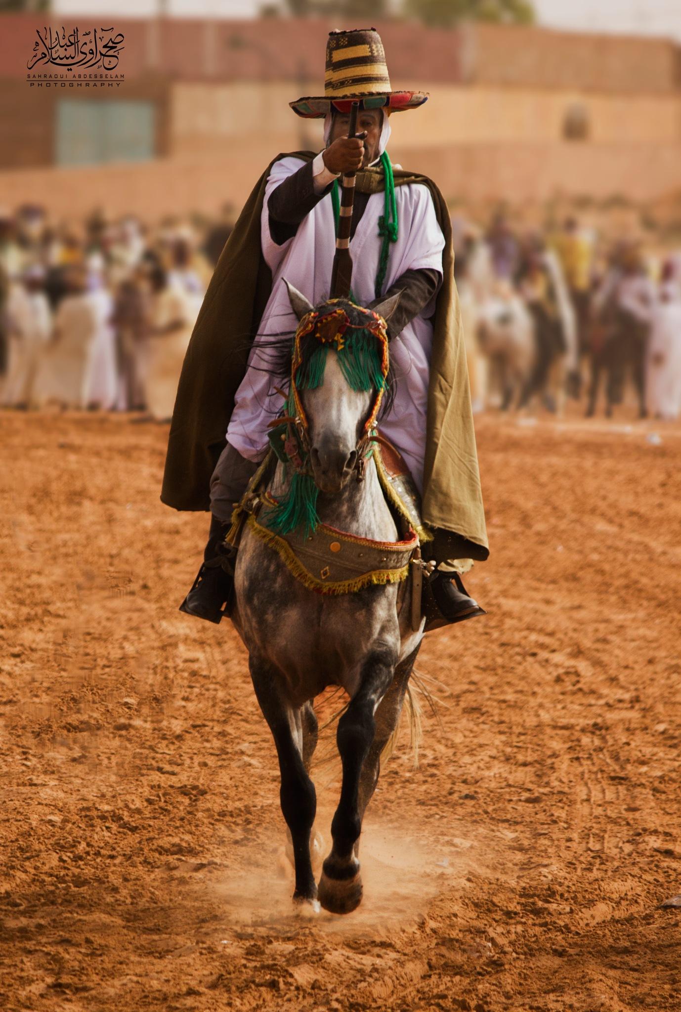 Arab Knight by Abd Salam Sahraoui